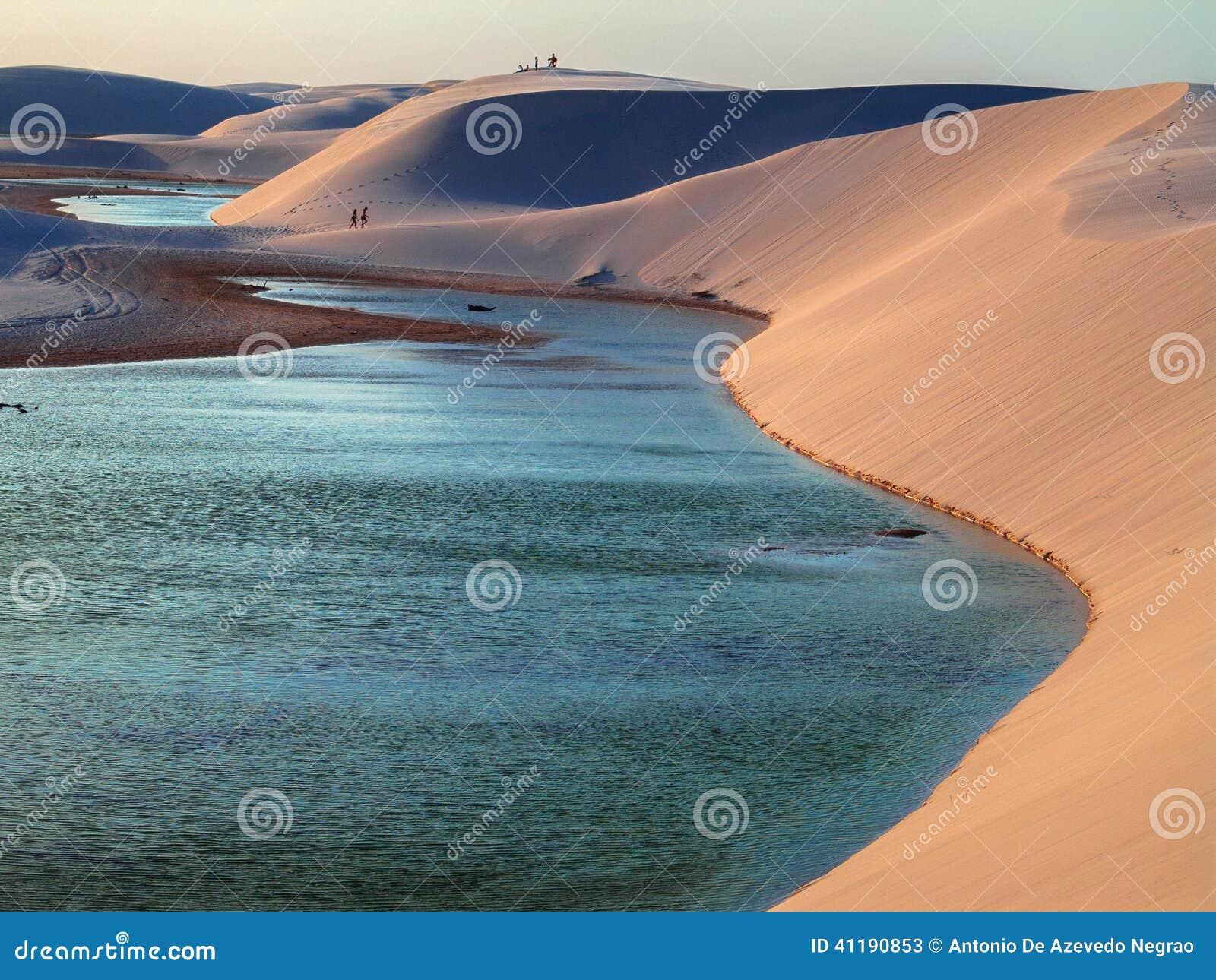 Duinen met lagune