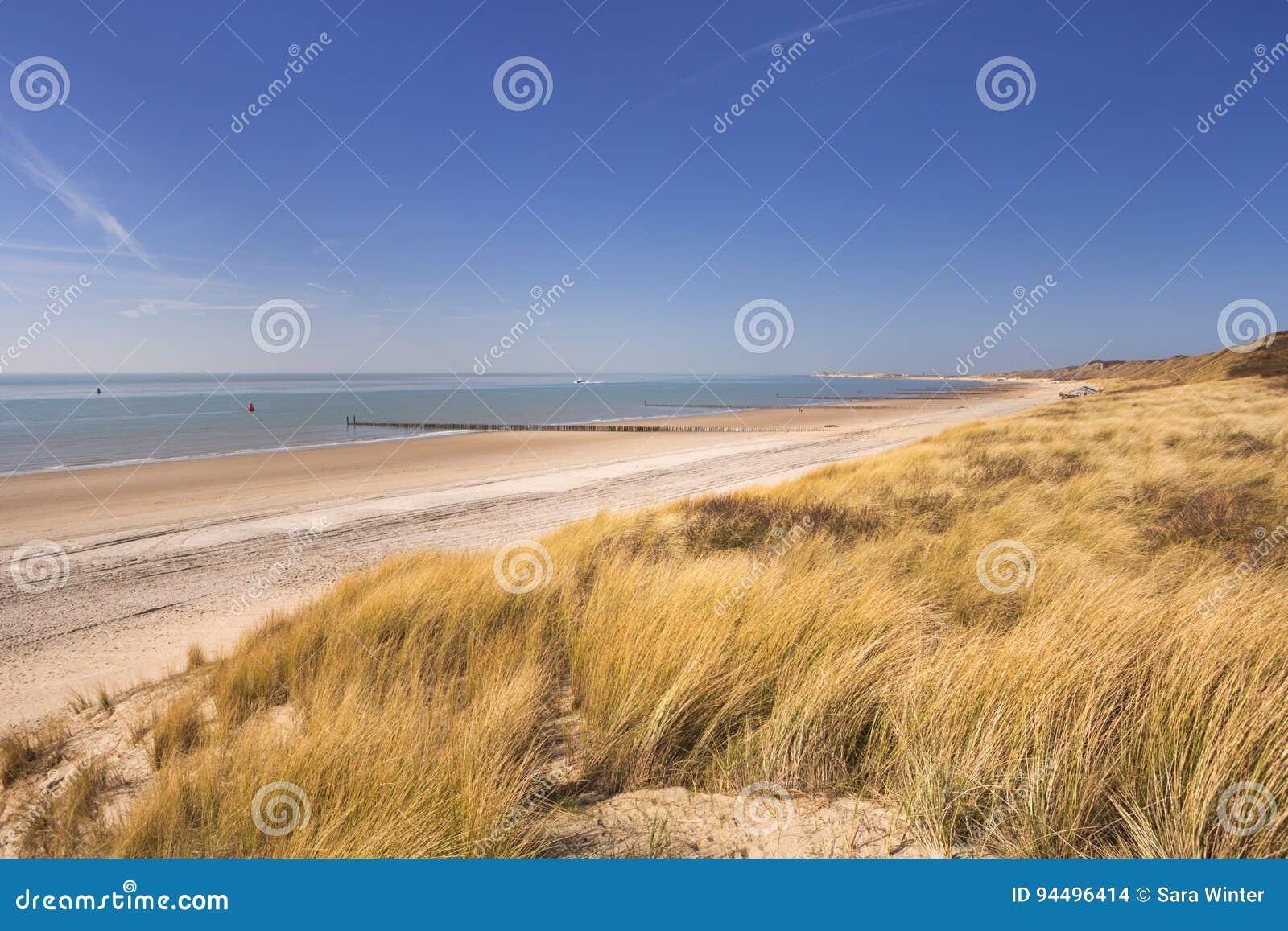Duinen op de kust van Dishoek in Nederland