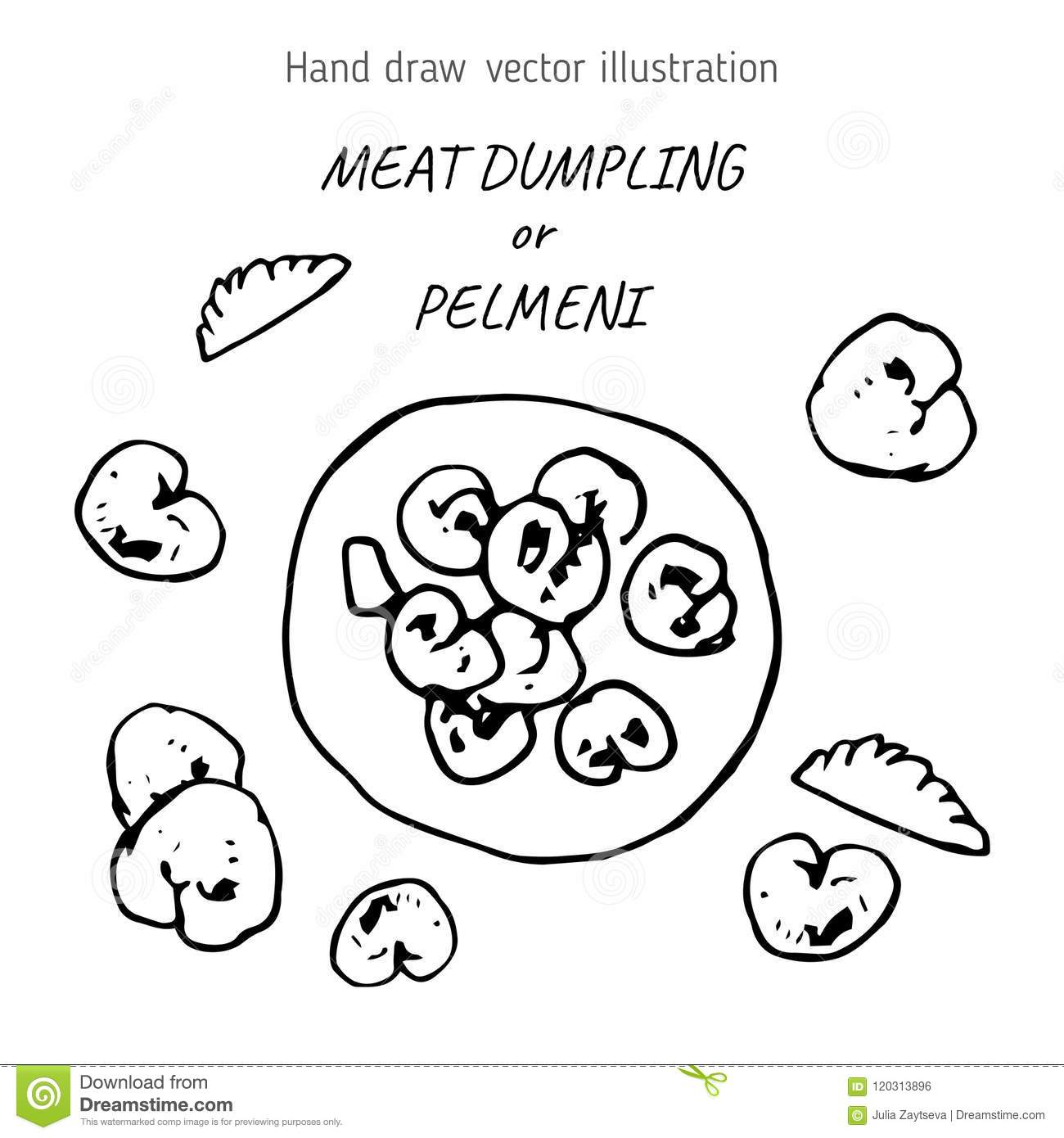 dumplings with meat hand drawn stock illustration illustration of  dumplings with meat hand drawn