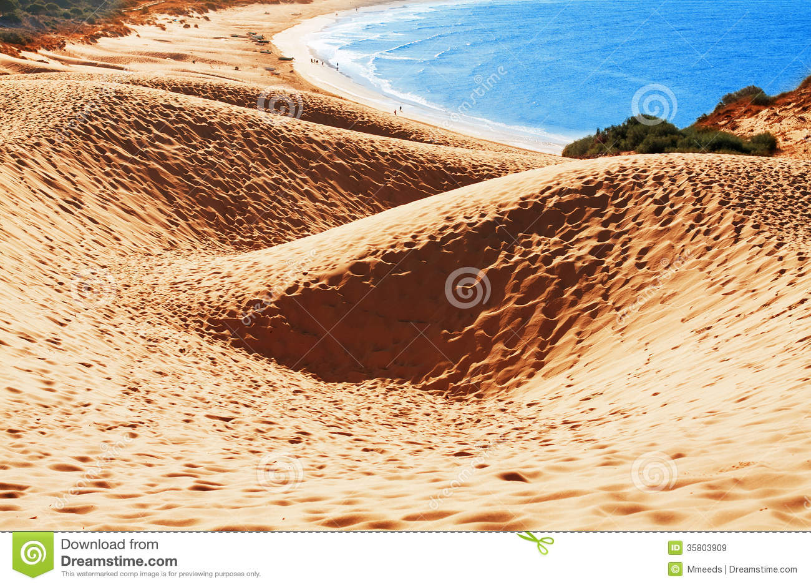 Duna de arena de la playa de bolonia provincia c diz for Arena de playa precio