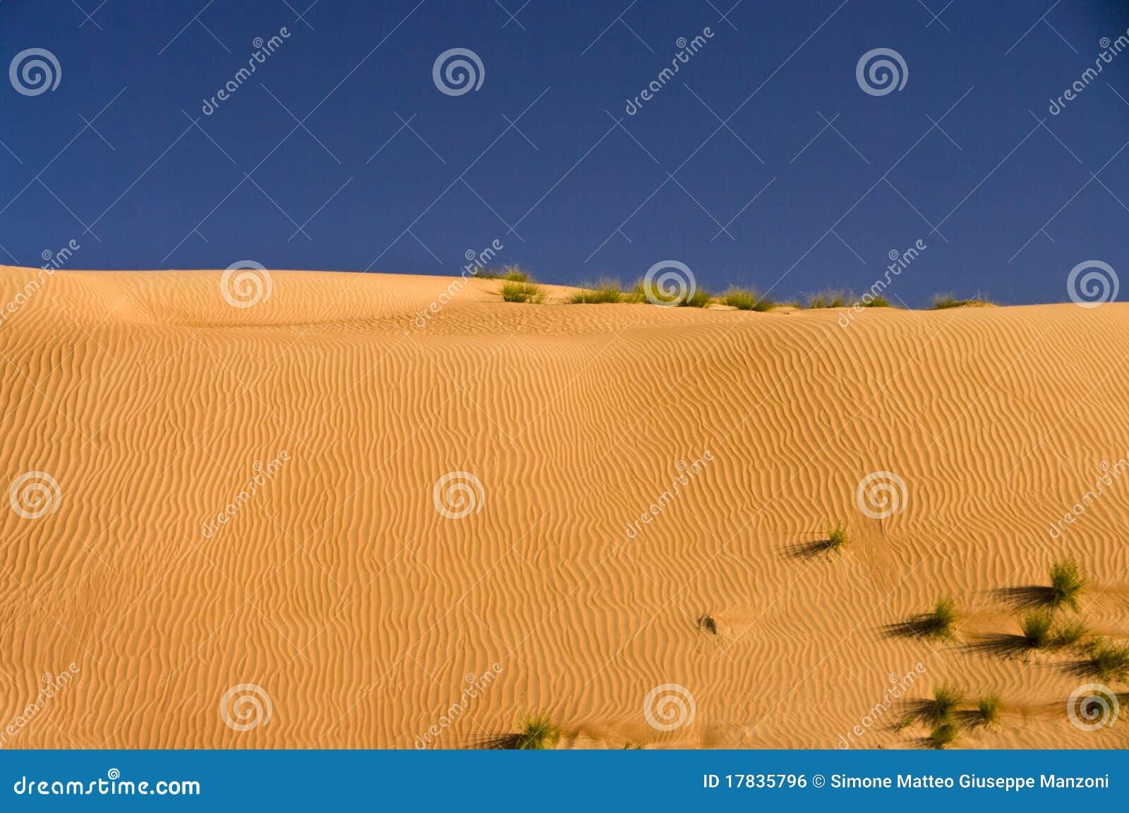 Duna do deserto, areias de Wahiba, Oman