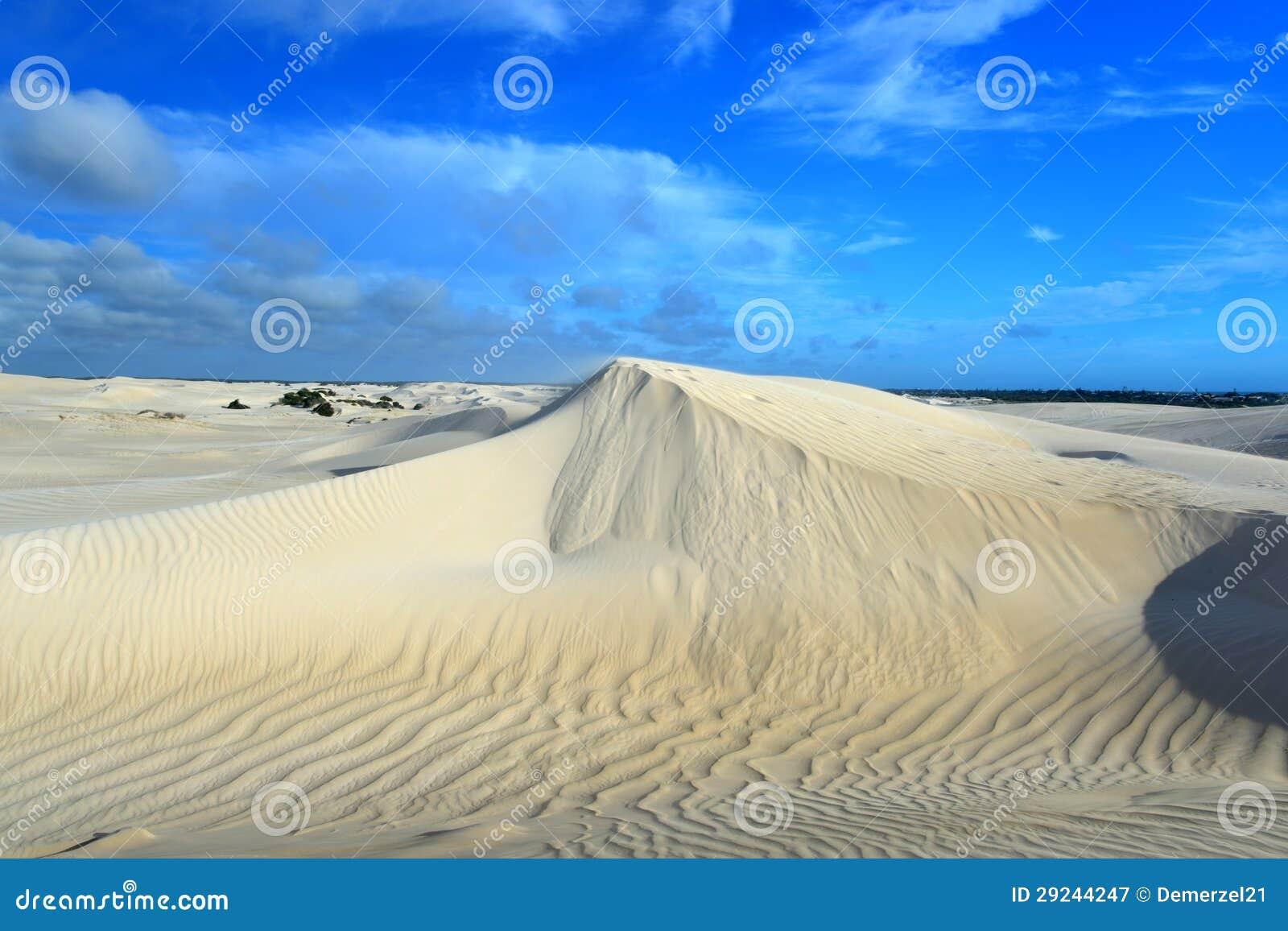 Download Dunas De Areia Brancas De Dunas De Areia Na Reserva Natural De Nilgen Imagem de Stock - Imagem de reserva, branco: 29244247