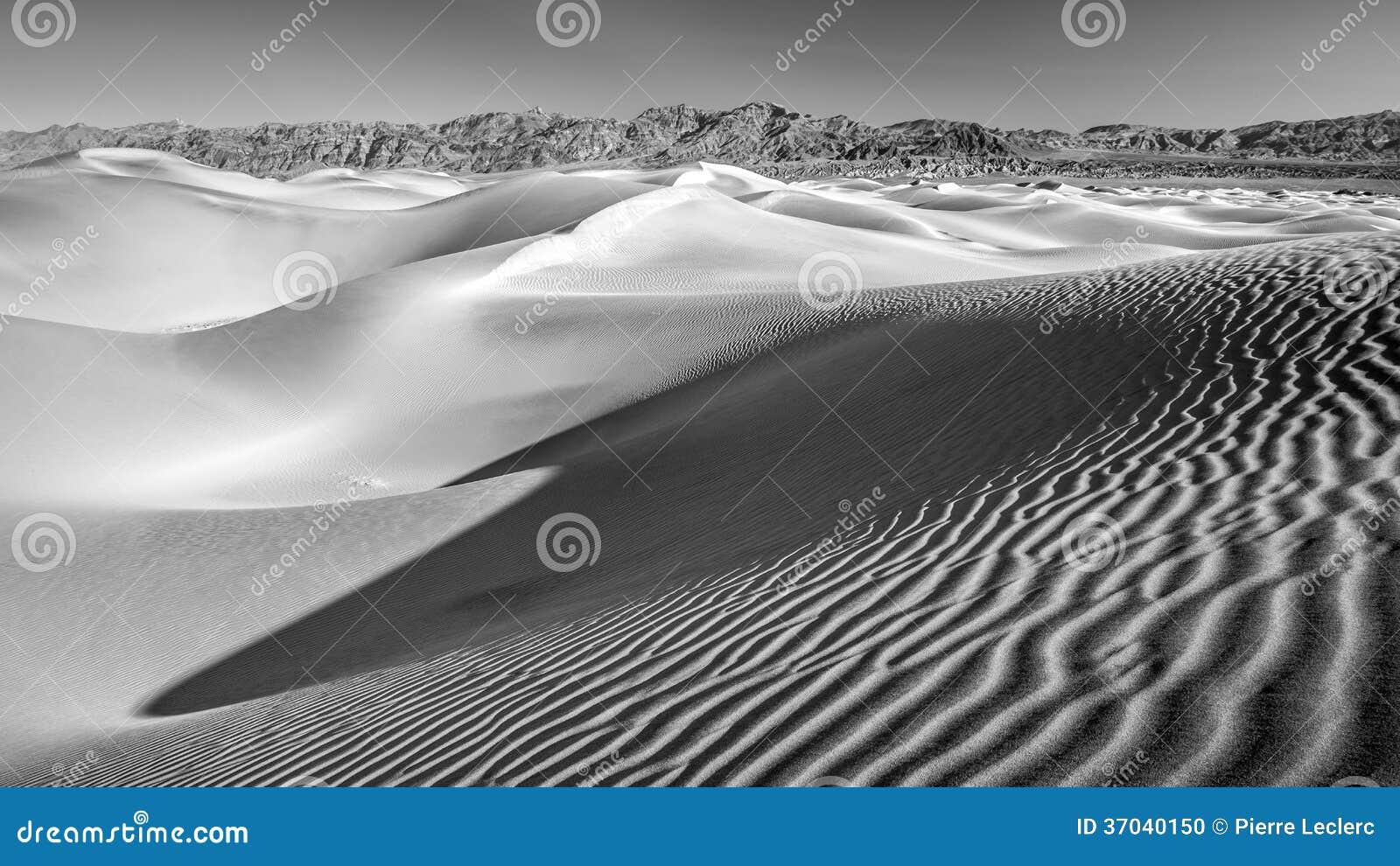 Dunas de areia do deserto em no2 preto e branco