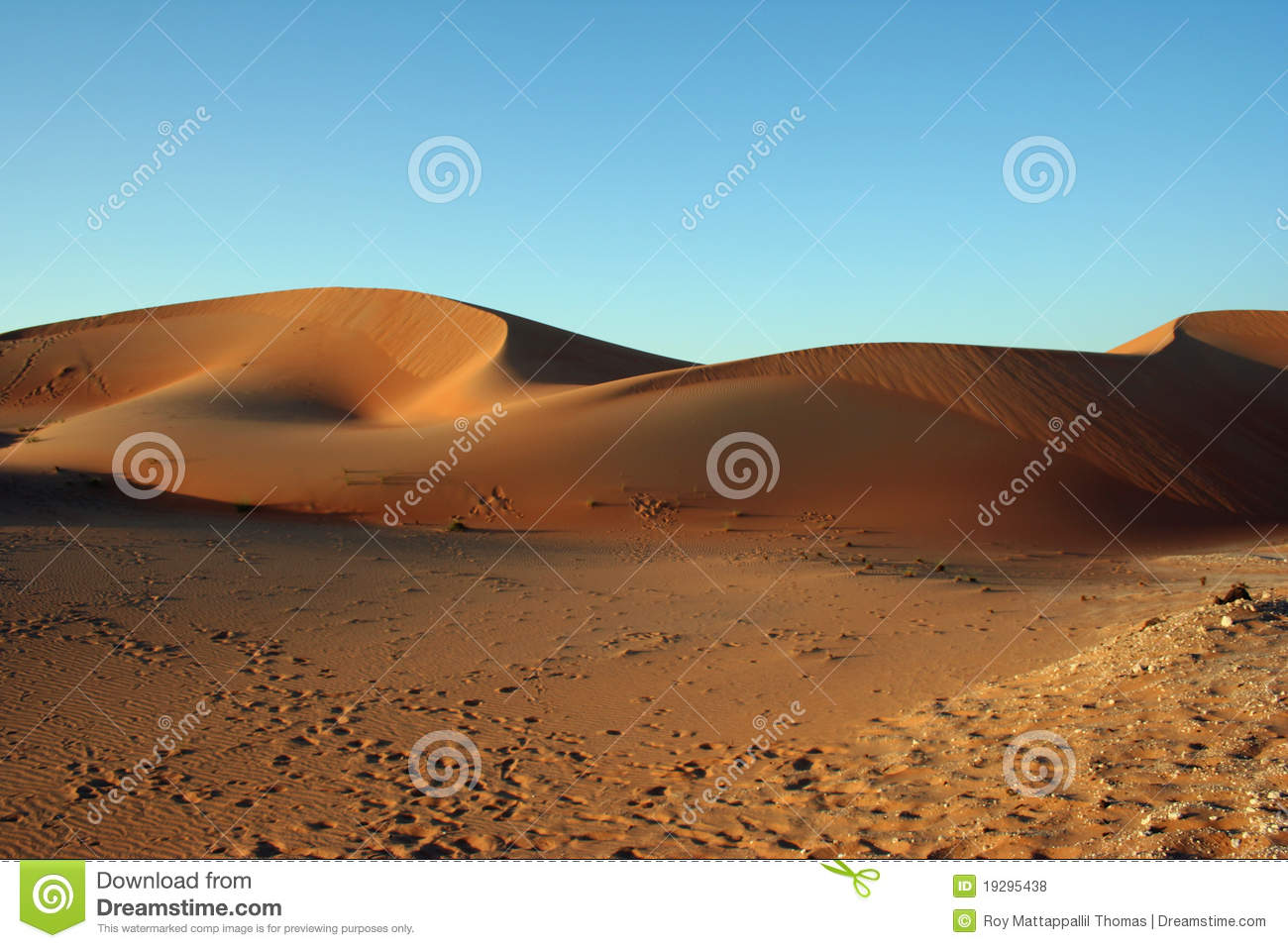 Courtesy Dreamstime Com