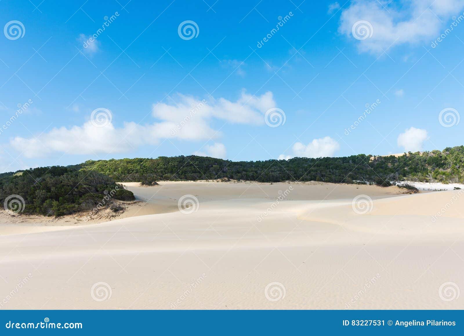 Dunas de arena del desierto de Fraser Island en Australia
