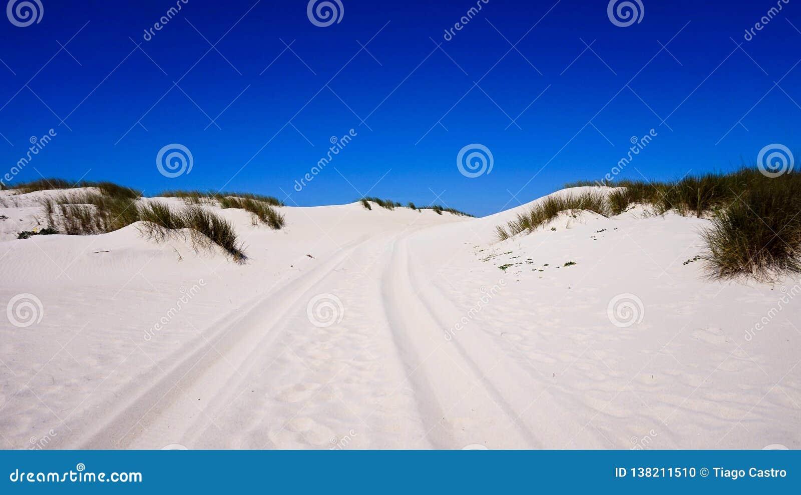 Dunas de arena en la playa en Portugal