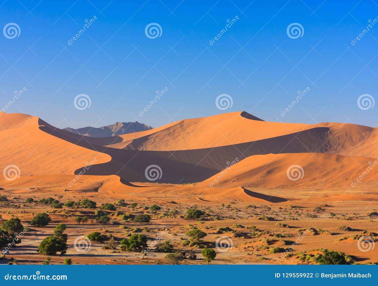 Dunas de arena rojas del desierto de Namib en luz de la mañana