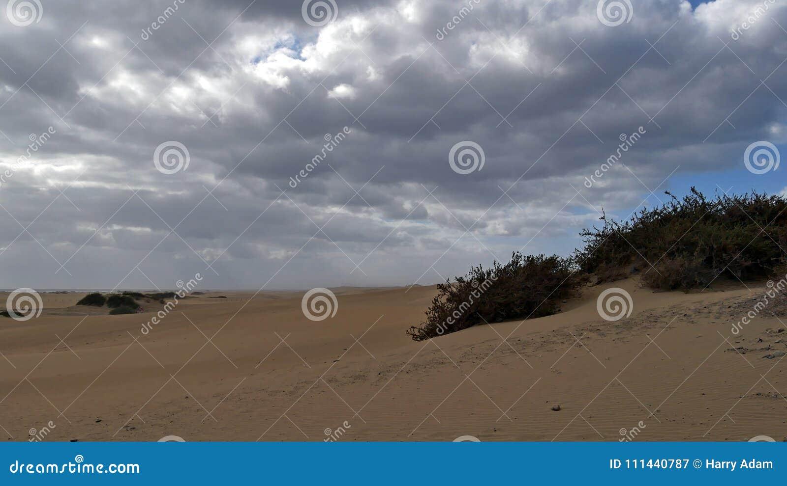 Dunas de Maspalomas - Gran Canaria - Spanien - am Sturm - grauer Himmel mit vielen Wolken