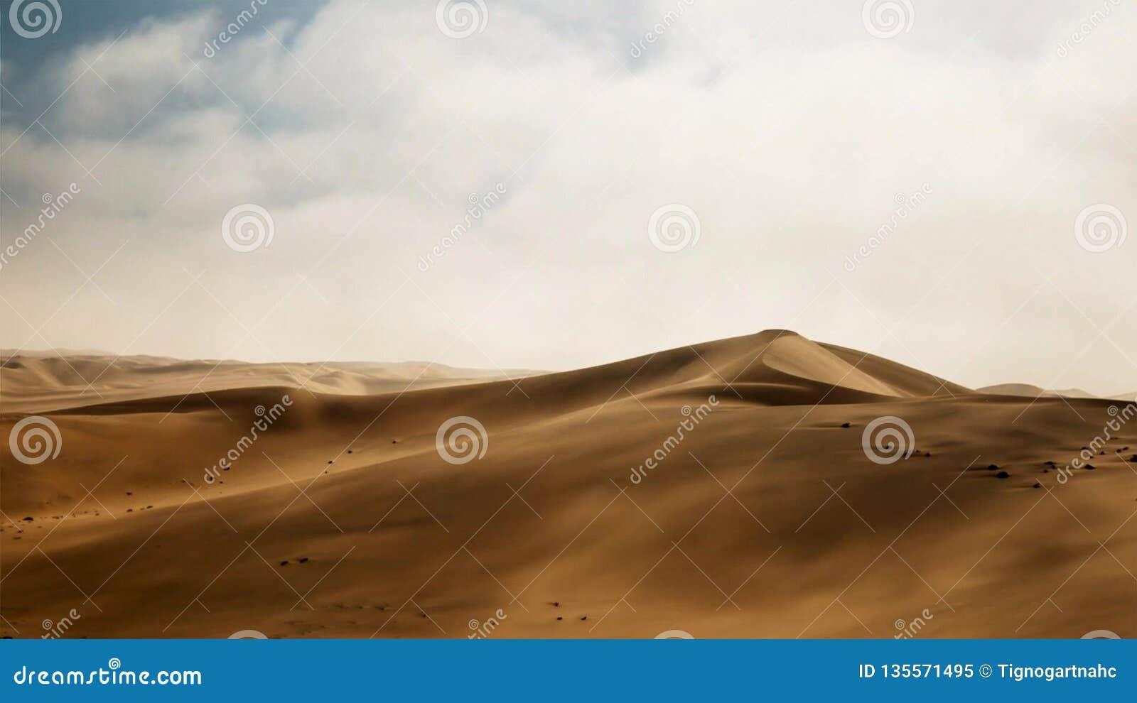 Dunas del desierto en el desierto de Namib, Namibia, África