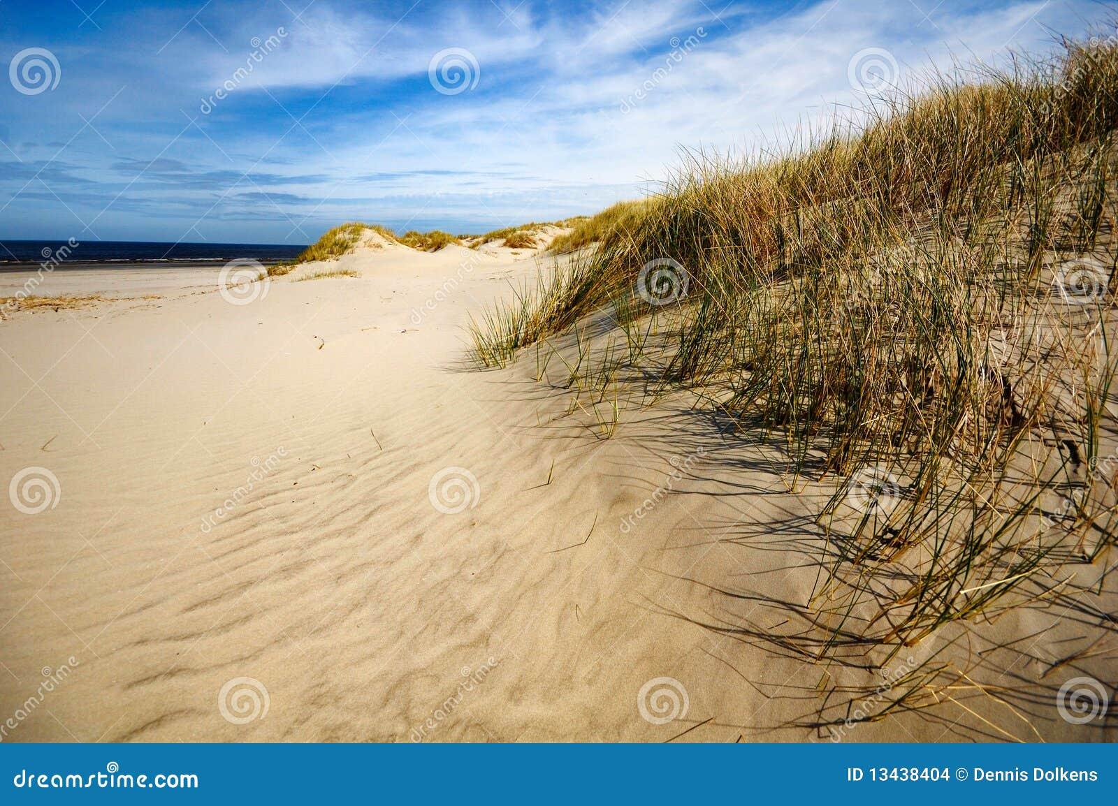 Dunas, praia e costa em Ameland, os Países Baixos