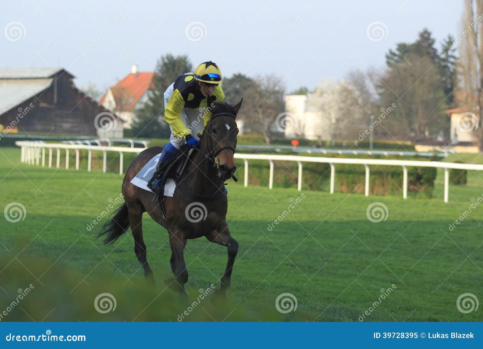 Dunata nella corsa di cavalli a Praga