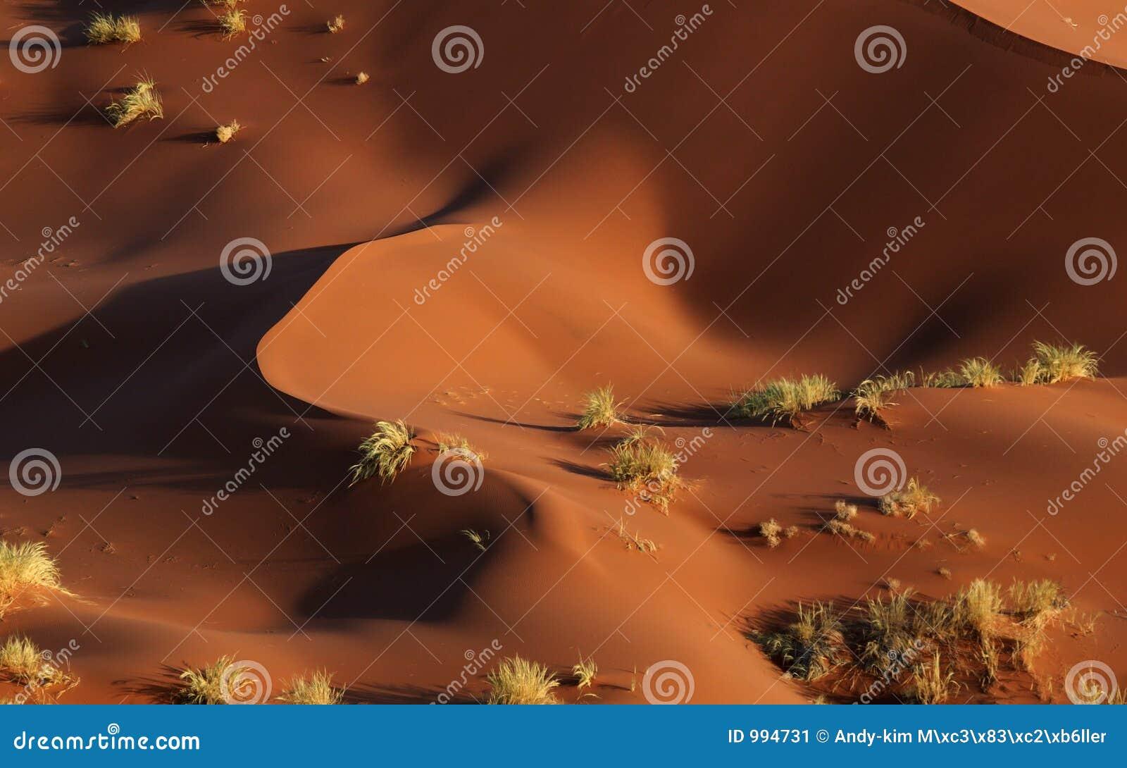Dune astratte del namib