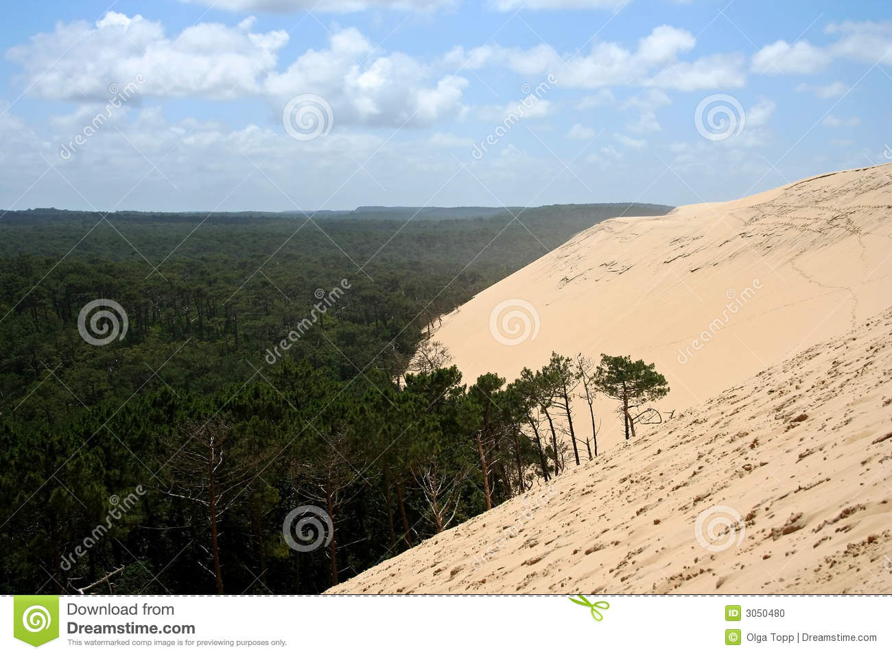 dune du pyla in arcachon france stock photo image of disaster dune 3050480. Black Bedroom Furniture Sets. Home Design Ideas