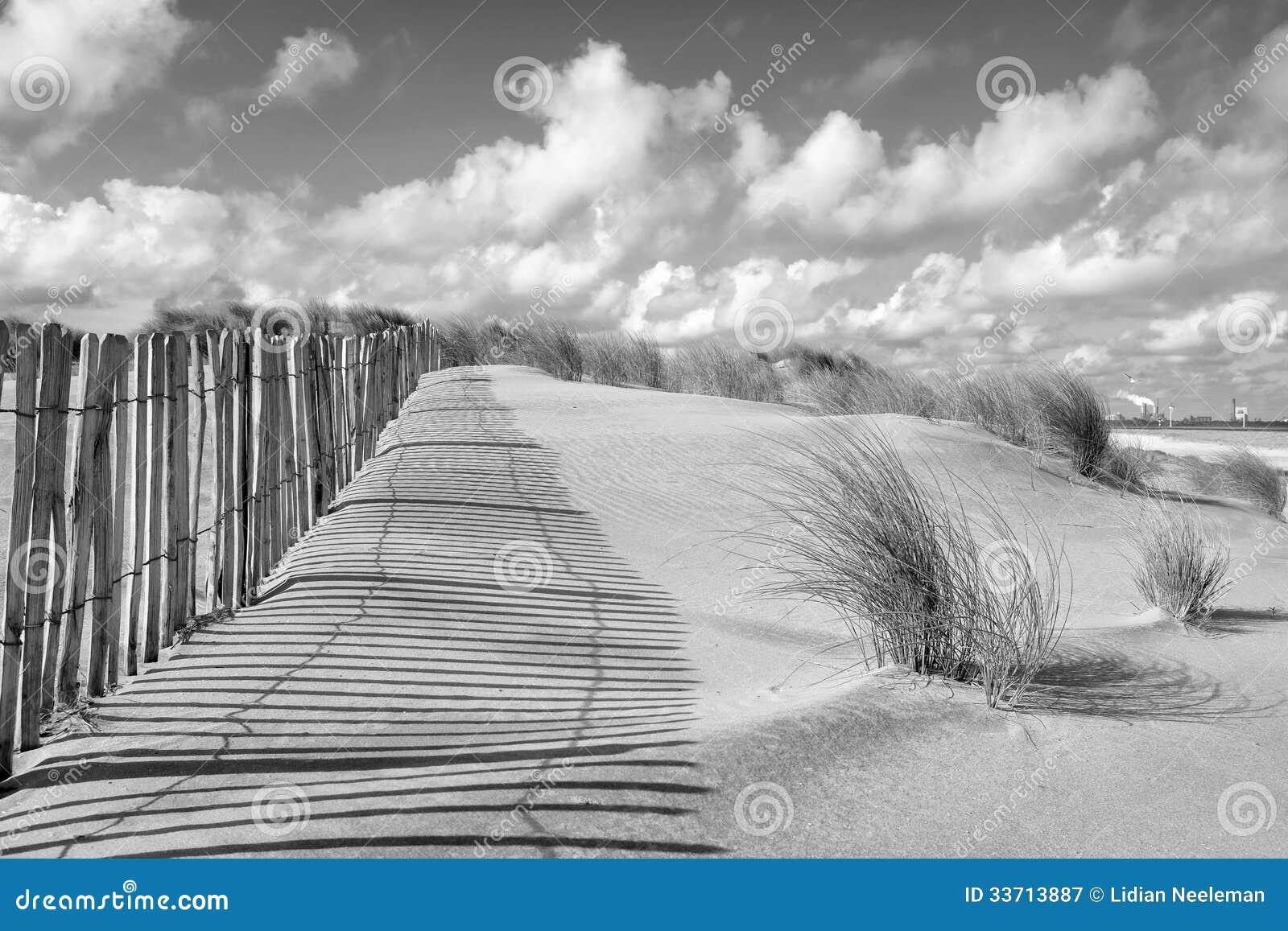 Dune landscape and fence in black and white stock image image 33713887 - Poel van blanco hoek ...