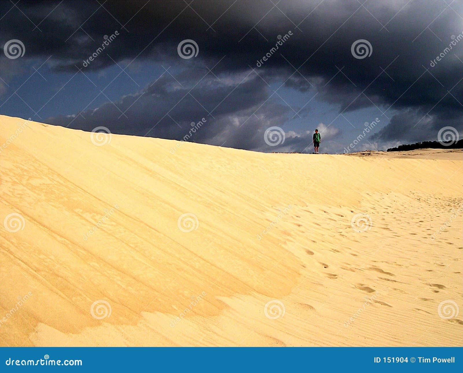 Dune over grey skies