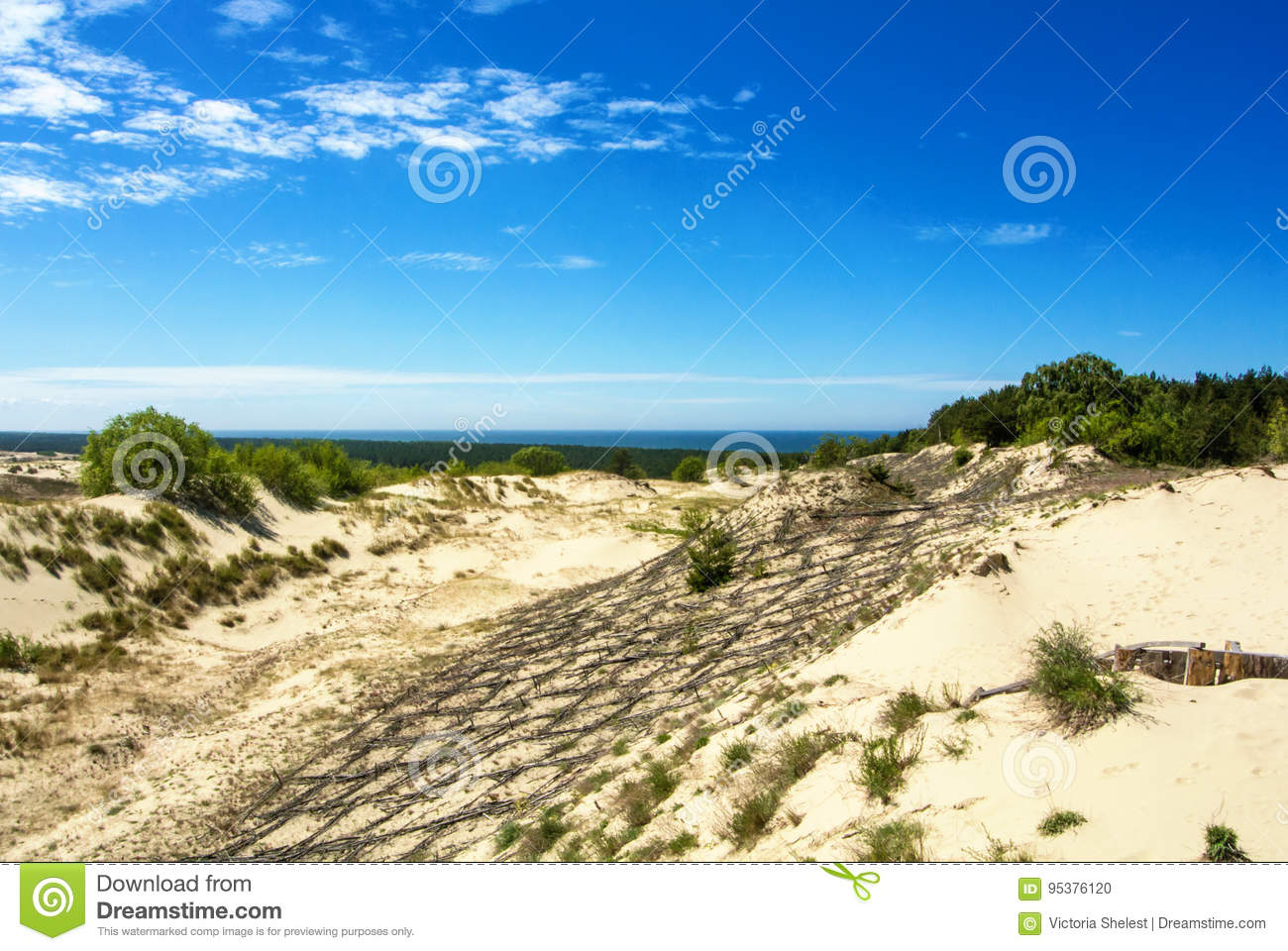 Dune protecting wooden construction over the sand at natural park of Curonian Spit