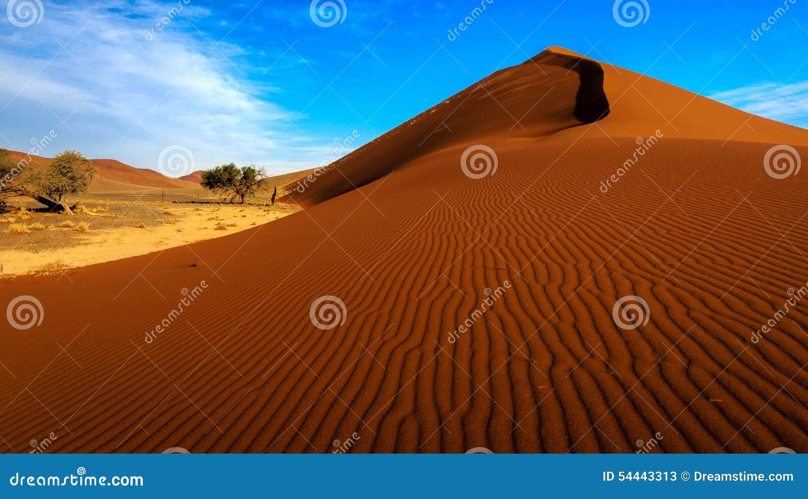Dune 45 Sossusvlei Namibia Stock Image Image Of Desert