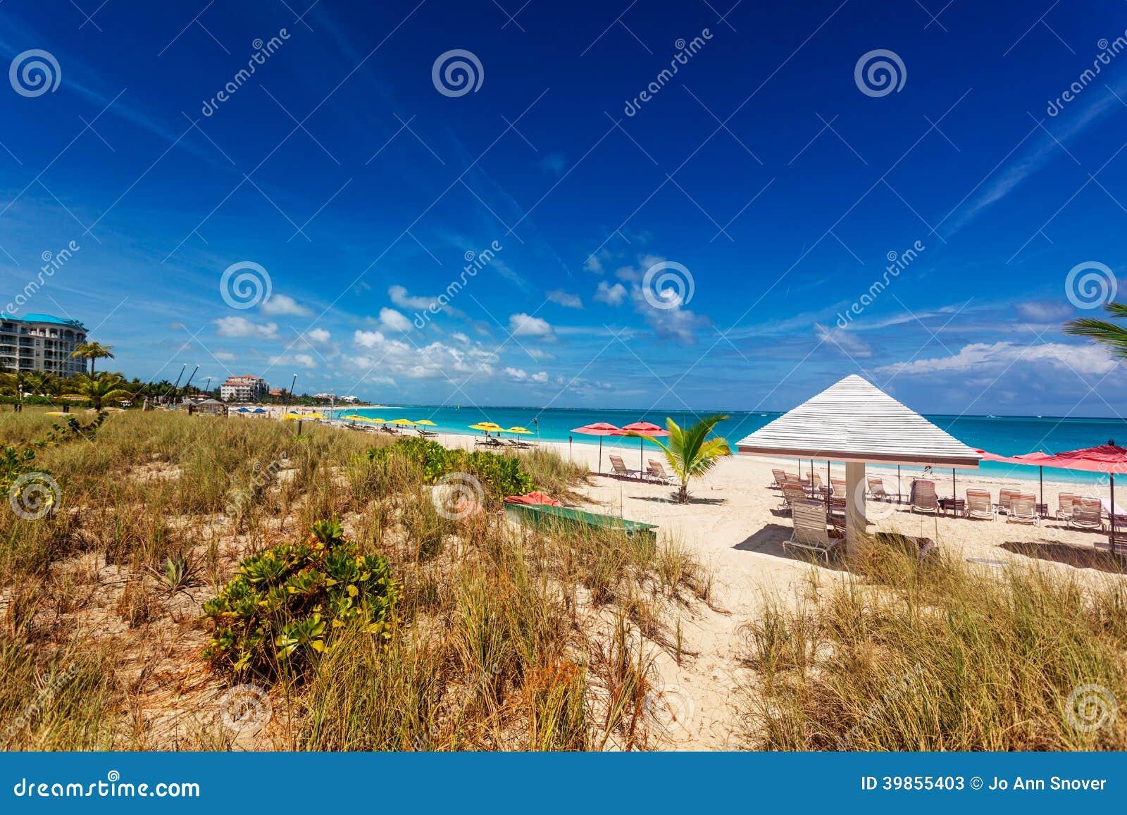 Dunes de plage de Grace Bay