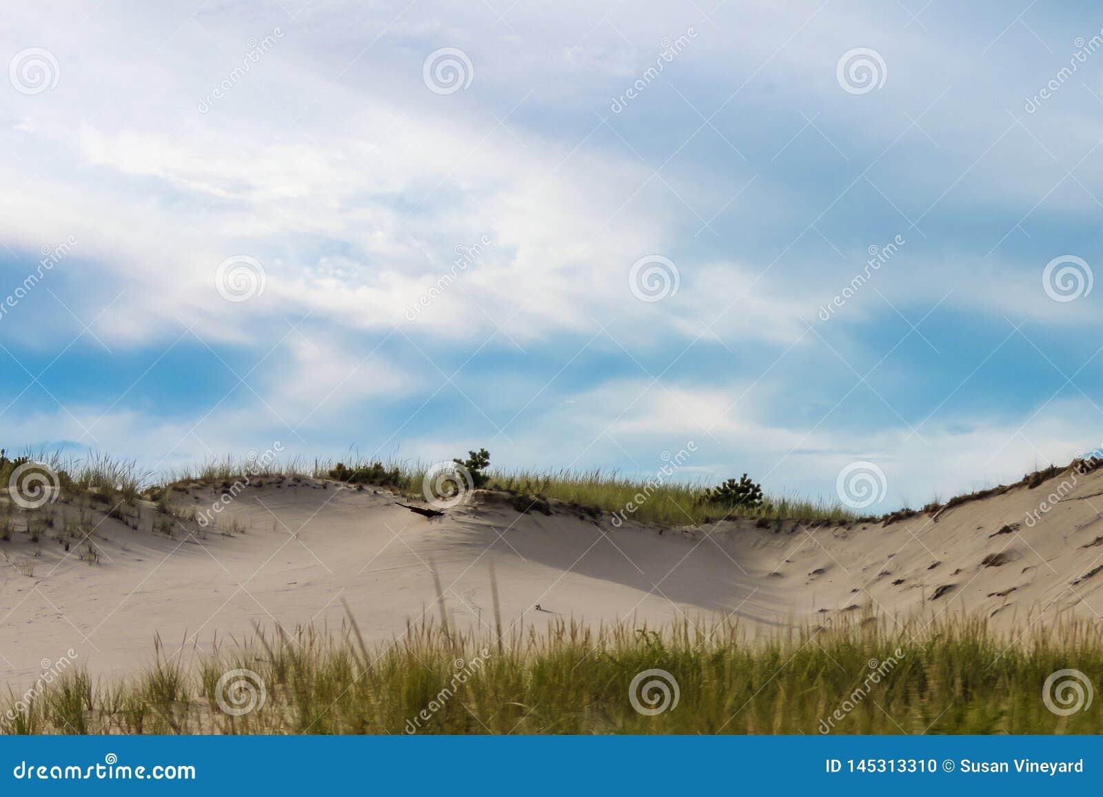 Dunes de sable dérivé avec l herbe sur l arête-horizon sous un ciel bleu