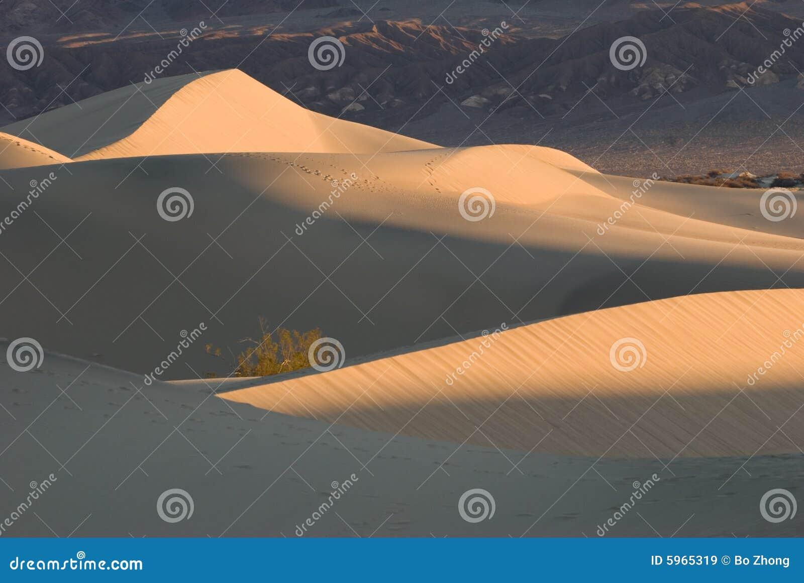 Dunes de sable dans Death Valley au lever de soleil