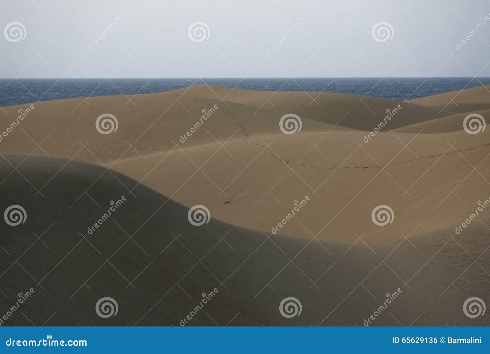 Dunes de sable et océan, Maspalomas, mamie Canaria