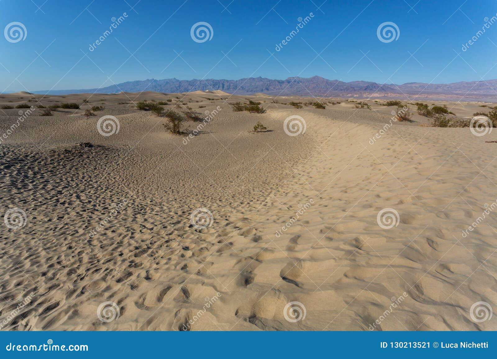 Dunes de sable plates de mesquite dans Death Valley