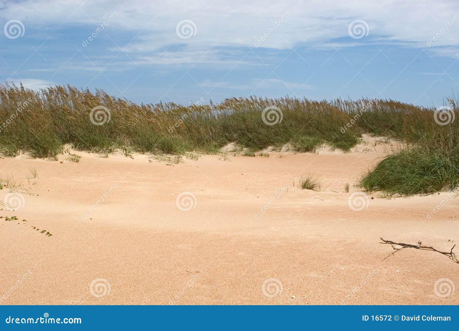 Dunes de surveillance de cap