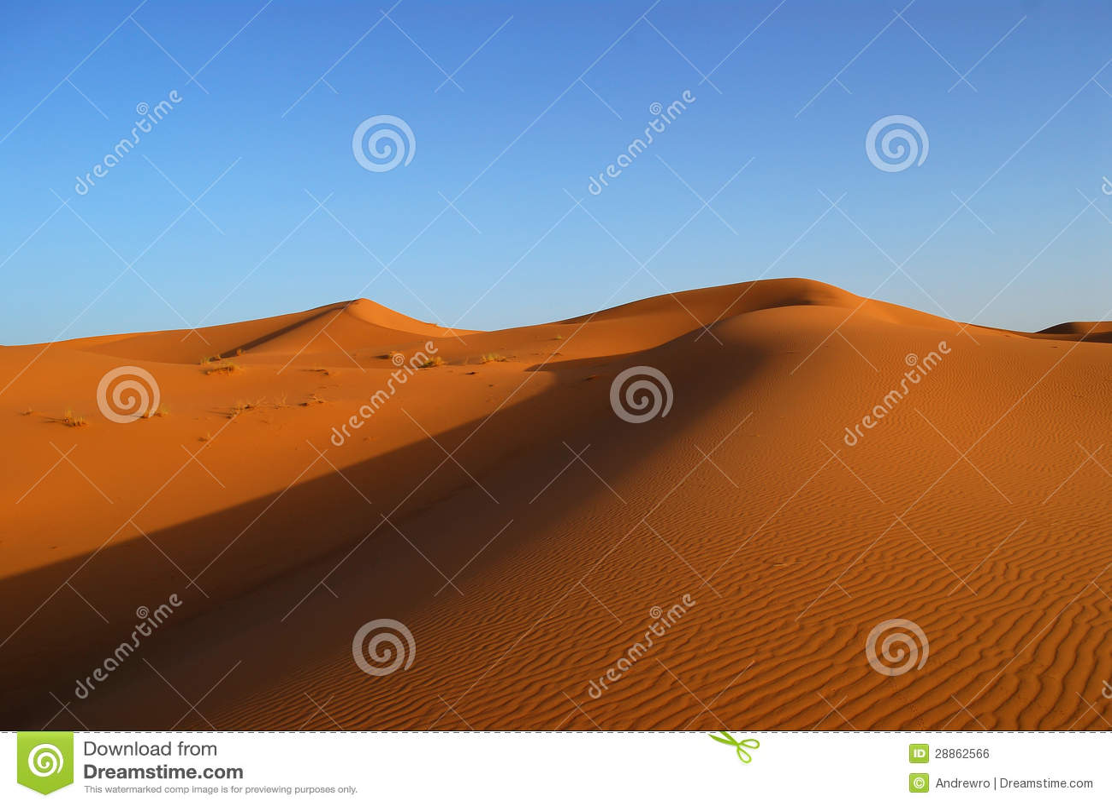 Dunes of Sahara Desert