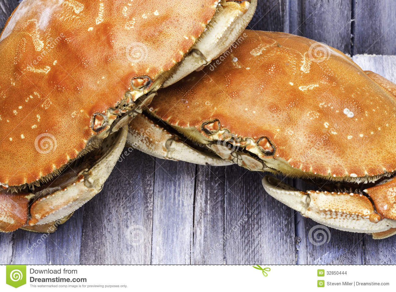 how to cook pre cooked dungeness crab
