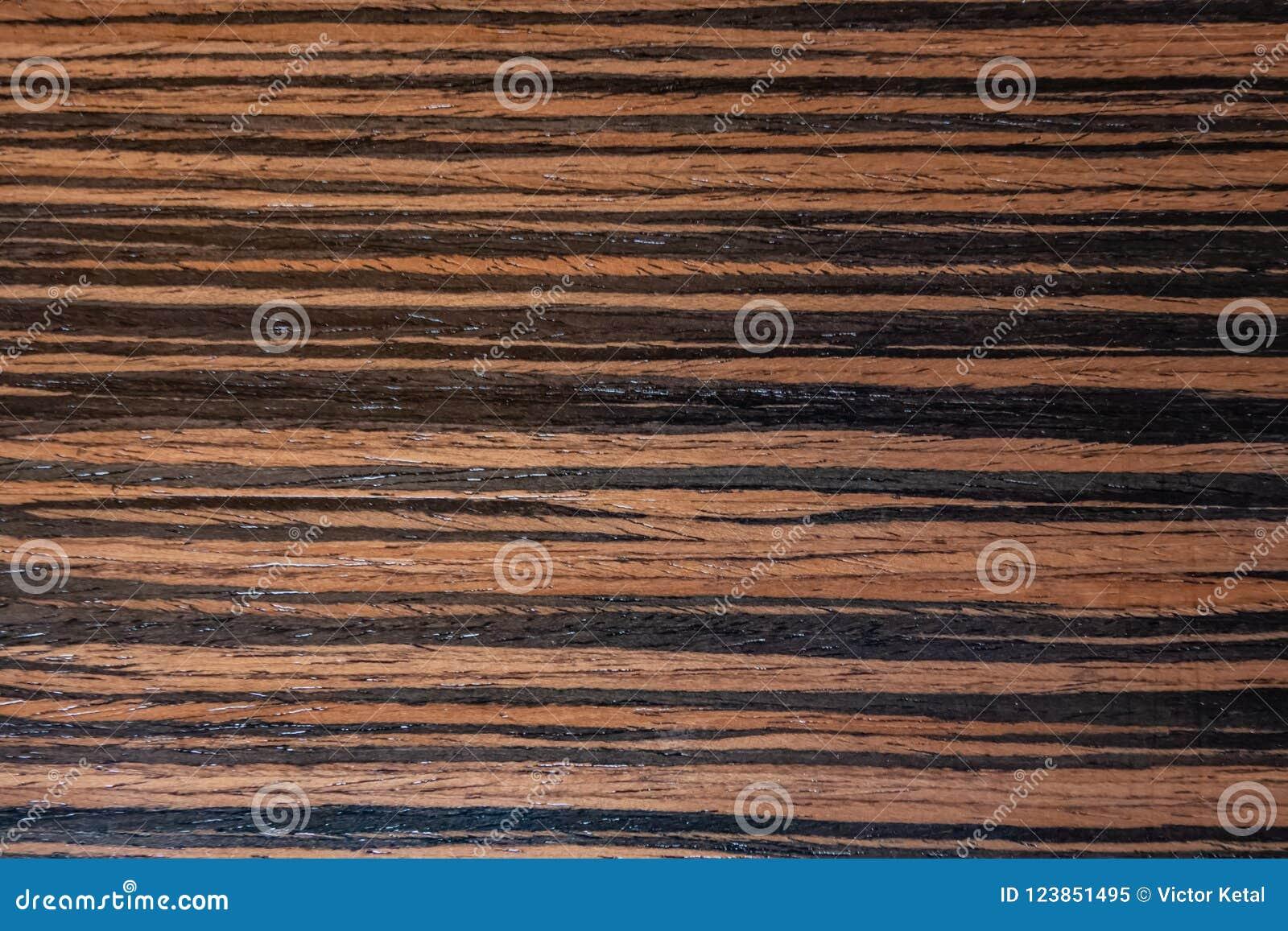 Dunkles Ebenholzfurnier-blatt, natürlicher hölzerner Hintergrund auf Makro Extrem Foto der hohen Auflösung