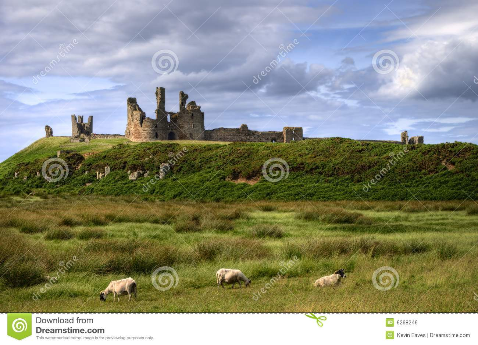 Dunstanburgh замока пася овец