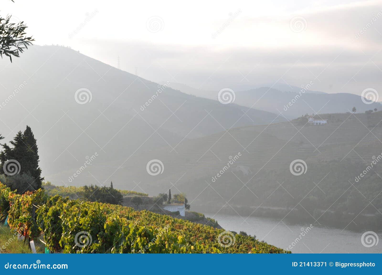 Duoro winnica romantyczny dolinny