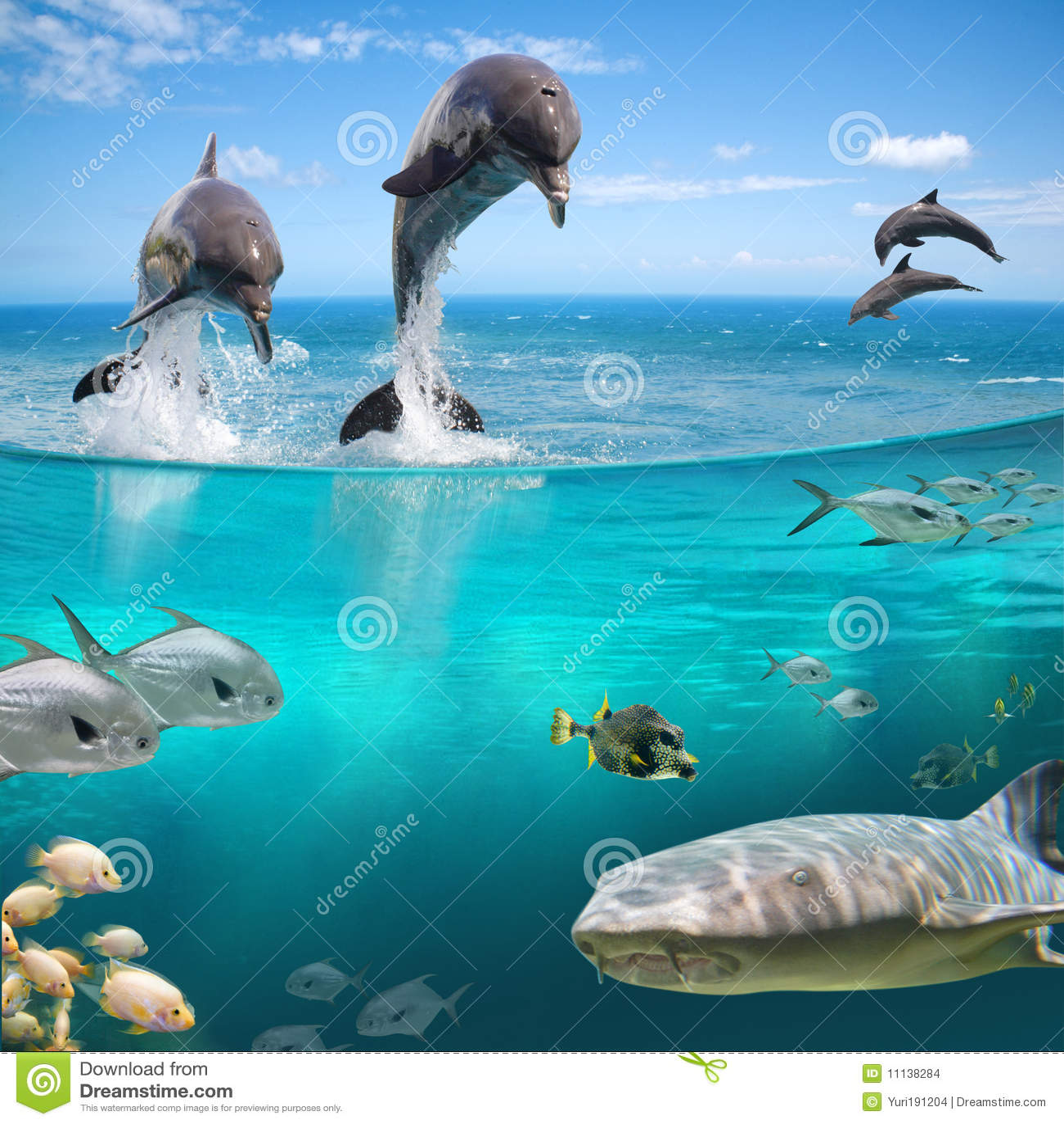 Durée marine