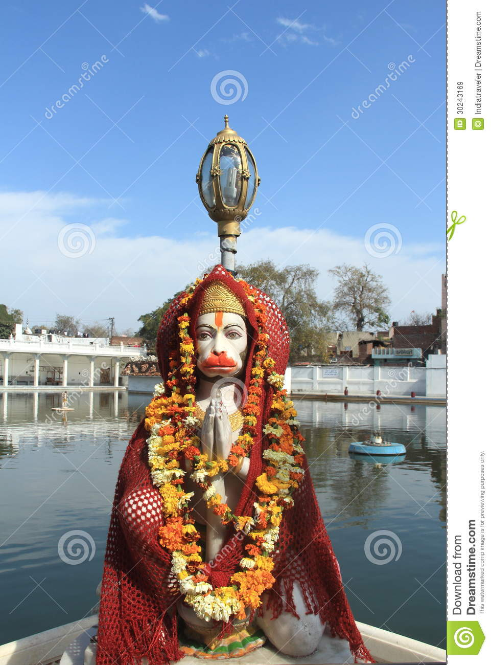 Monkey God Stock Image Image Of Flower Erect Holy