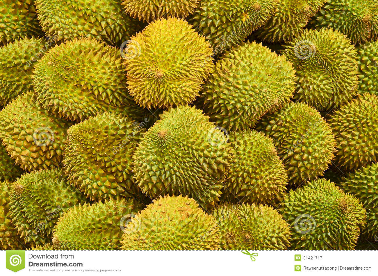 Durian Royalty Free Stock Photography Image 31421717
