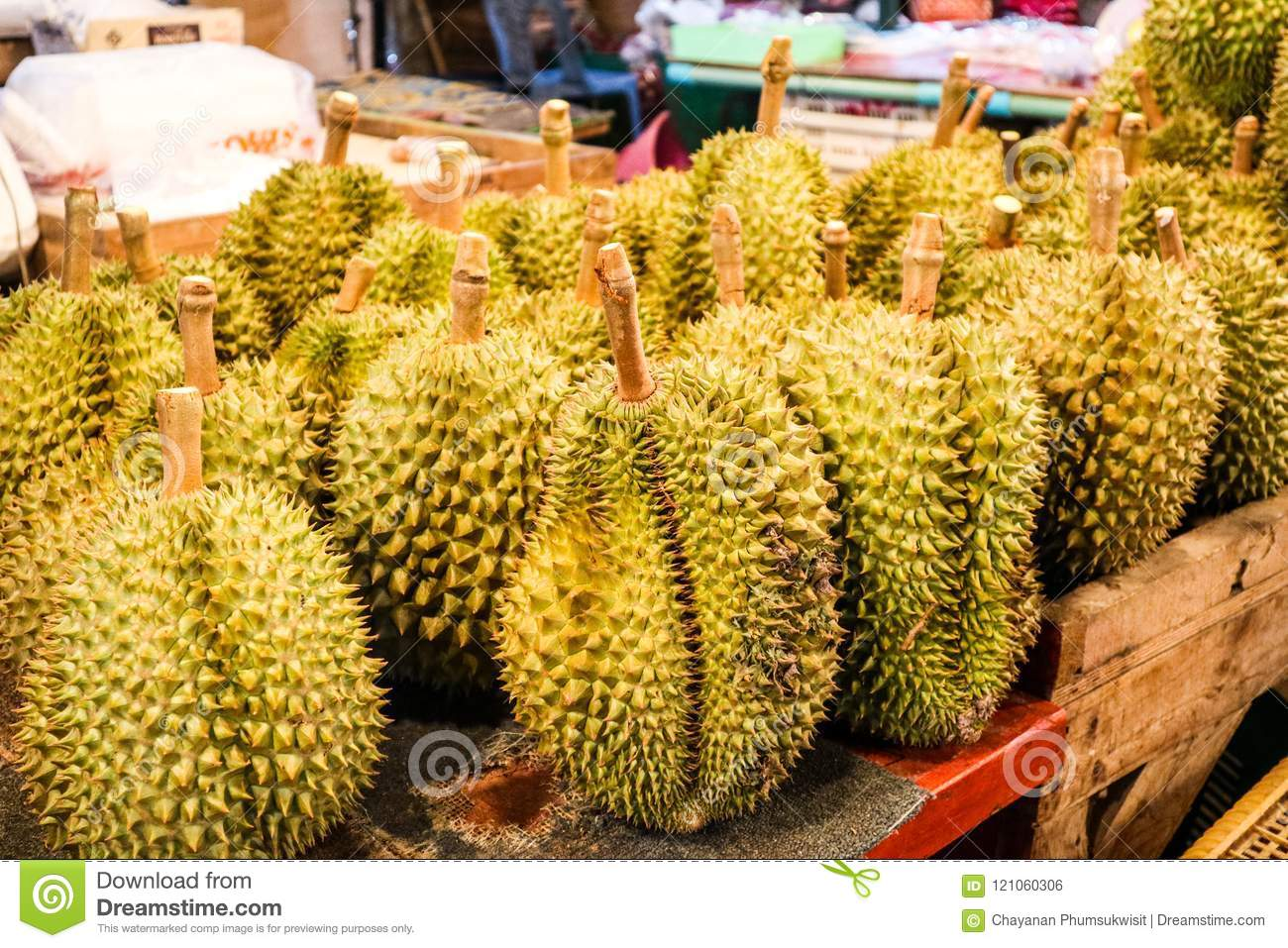 The durian is the fruit of several tree