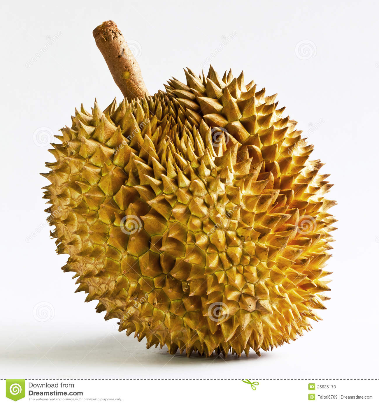 Durian Fruit From Thailand. Stock Photo