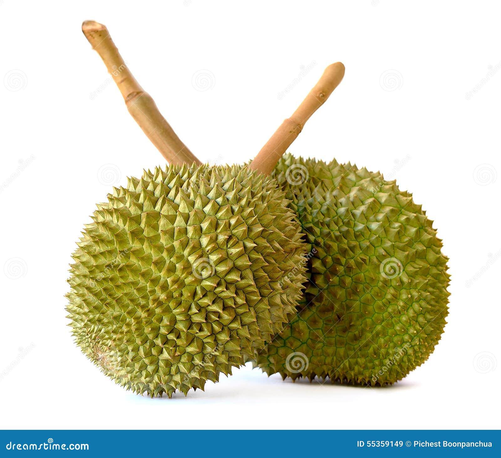 Durian isolato sui precedenti bianchi