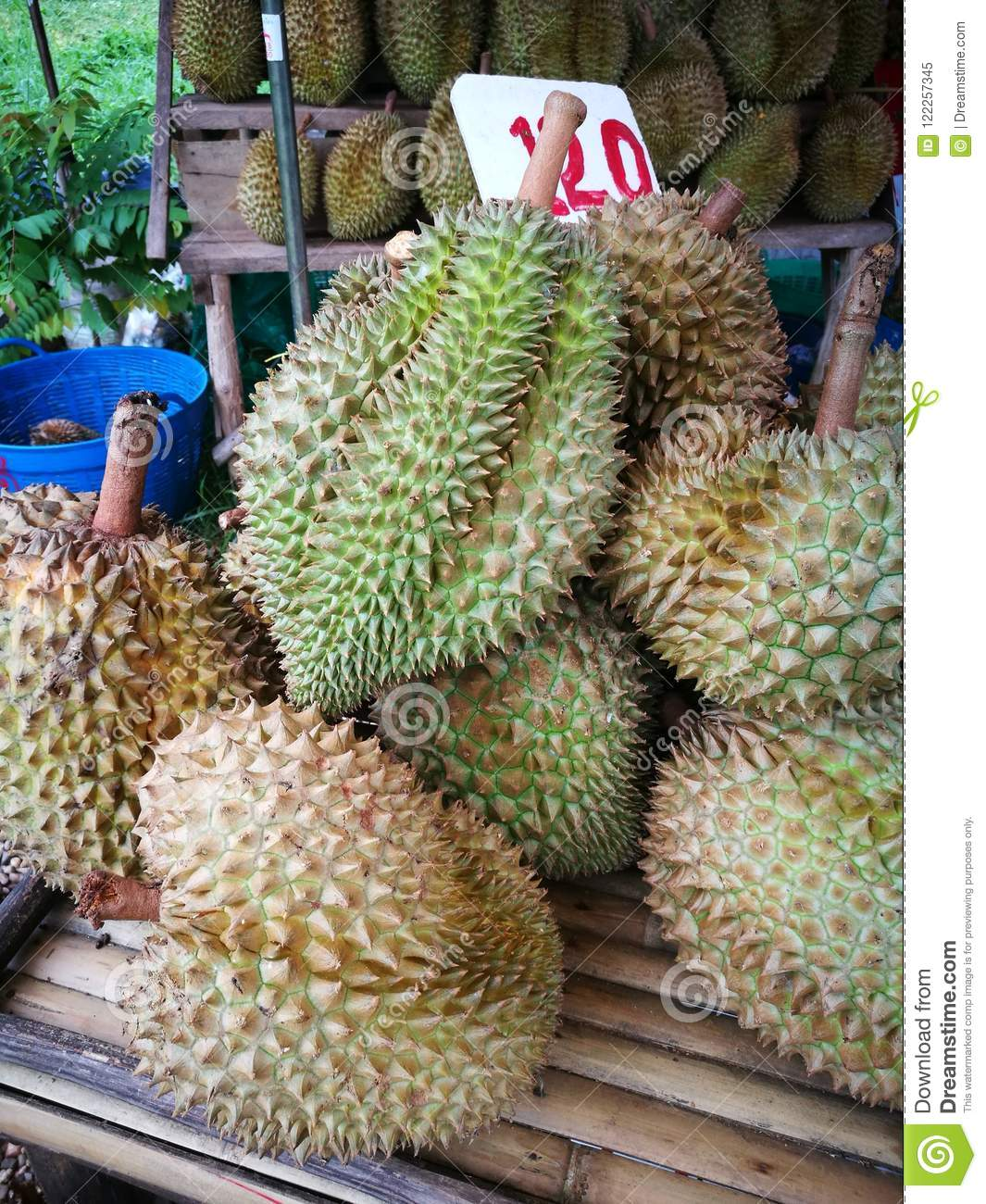 Durian, king of fruits for sell on market. Durian on the street market. Yummy yellow durian ripped. Tropical Thai fruit.