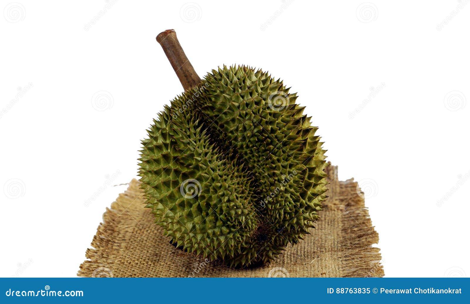Durian królewiątko owoc