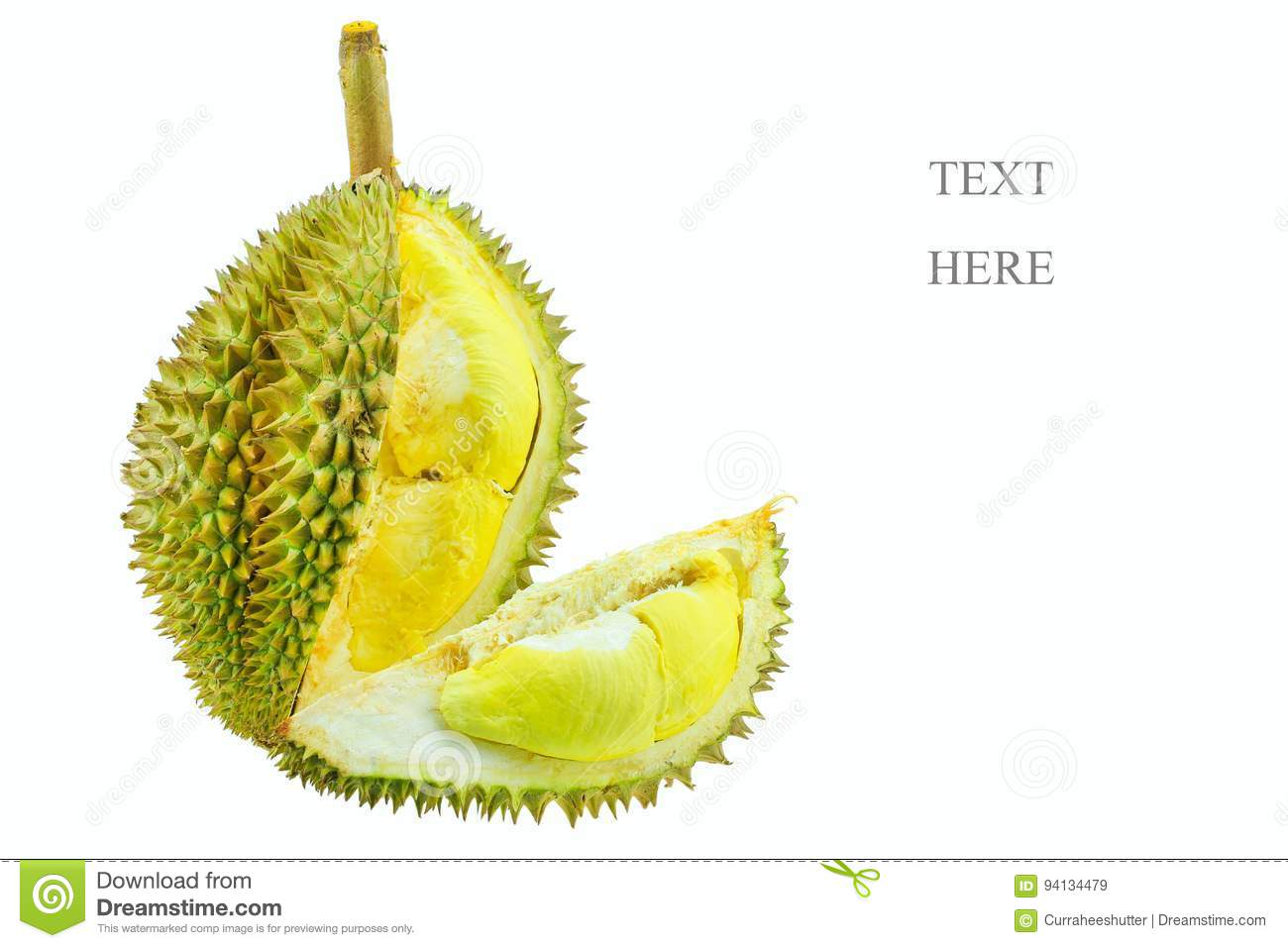 Durian From Orchard For Export To The Market Or Supermarket King Of Fruit Is Durian And So Smell Some People Favorite Durian Stock Image Image Of Fruit Calorie 94134479