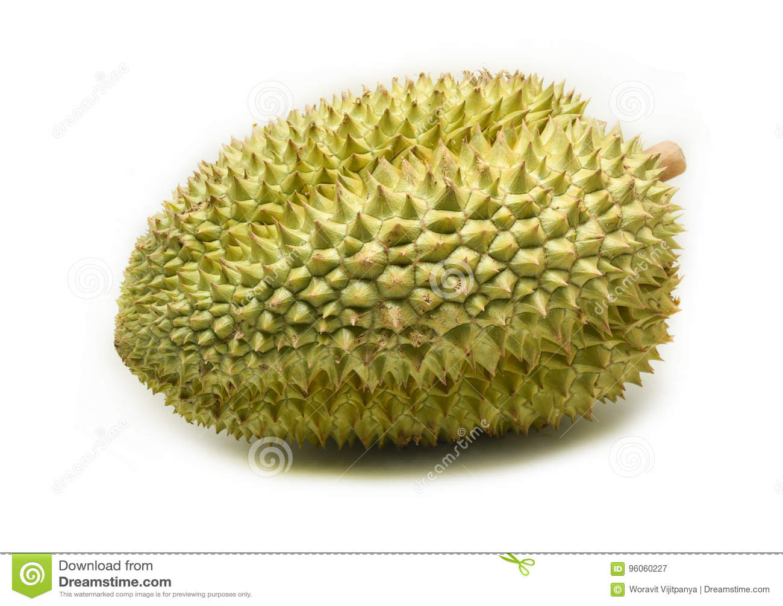 Durian sur le blanc