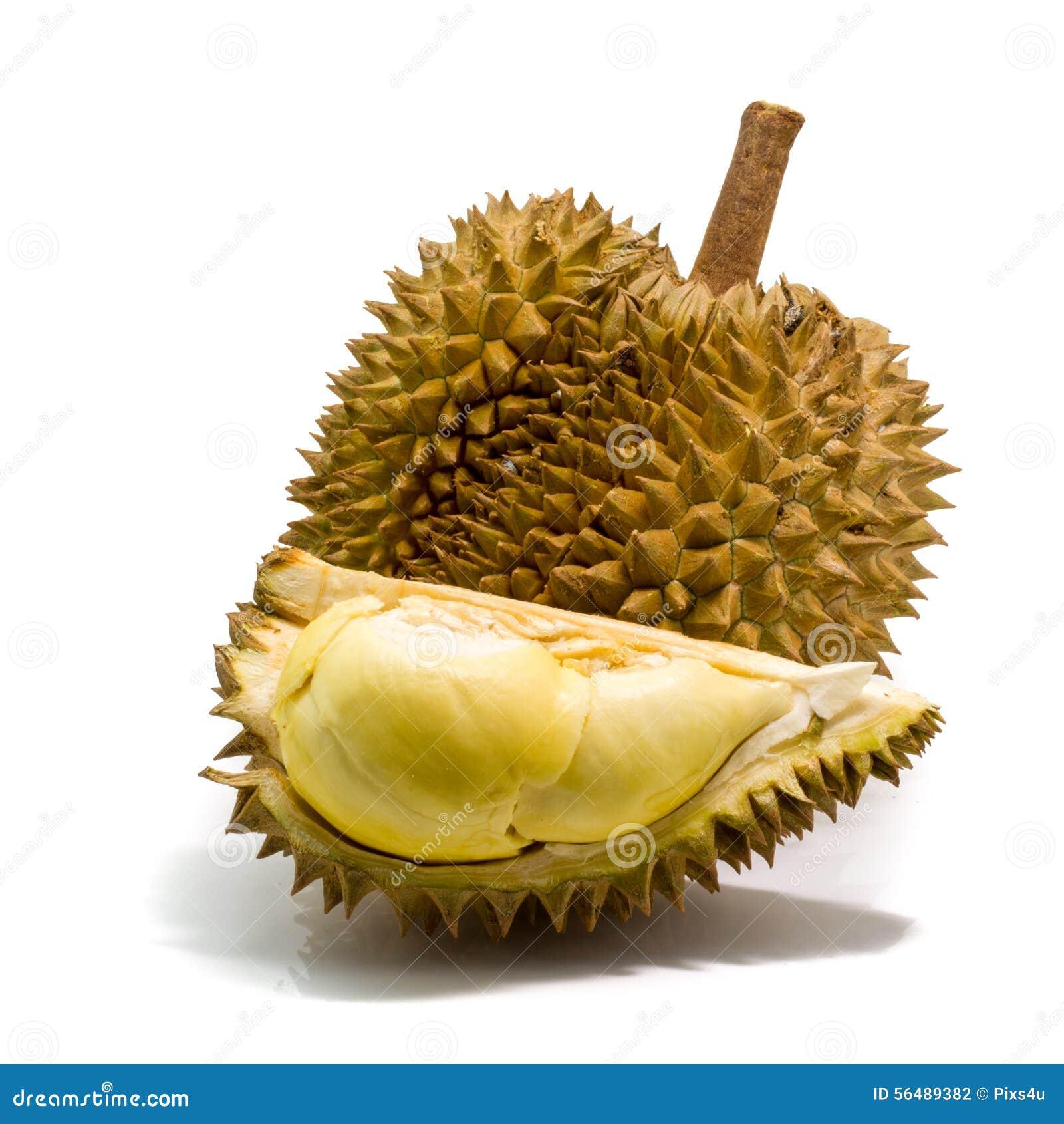 Durian thaïlandais, fruit tropical