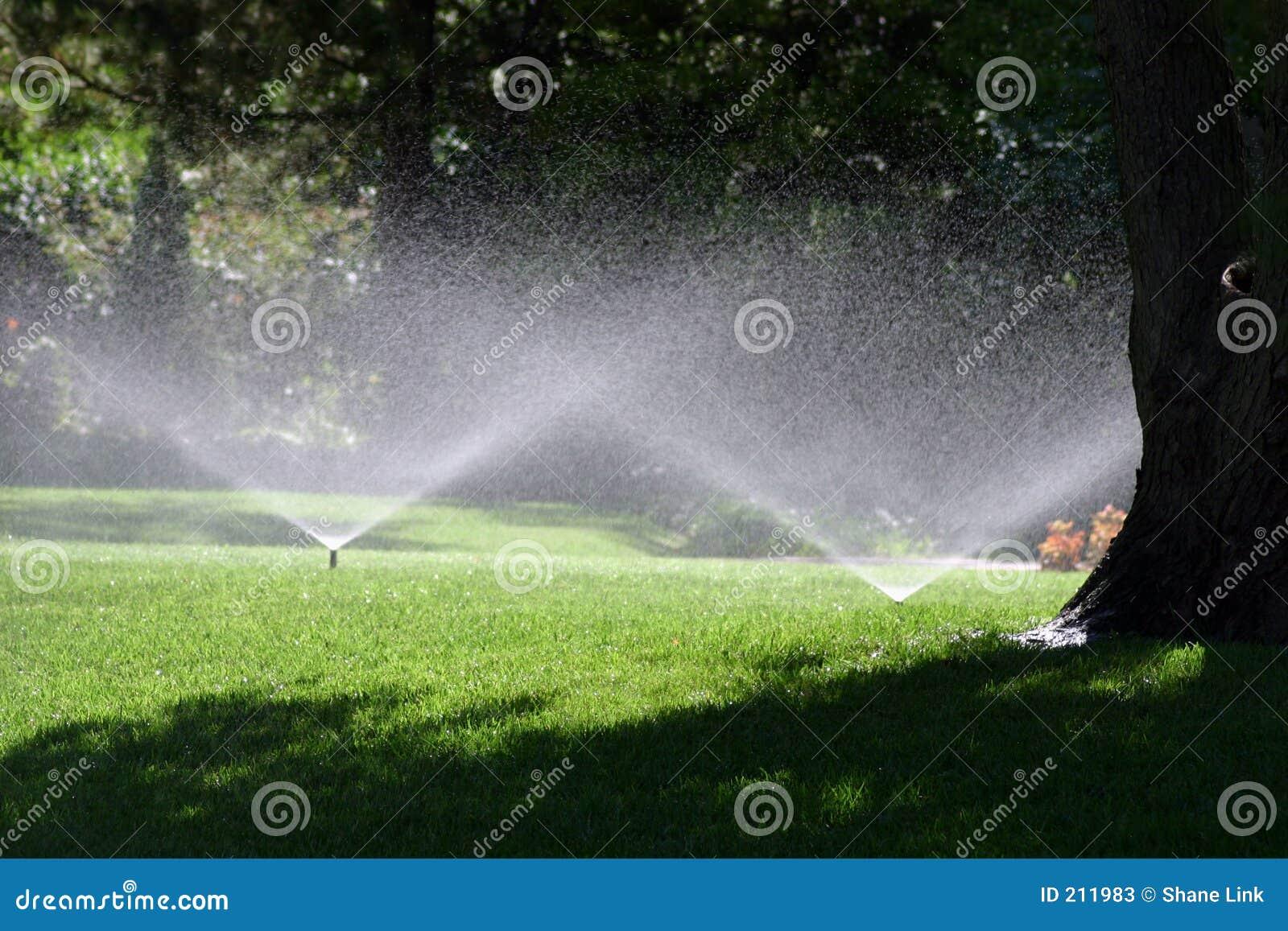 Duschsommar