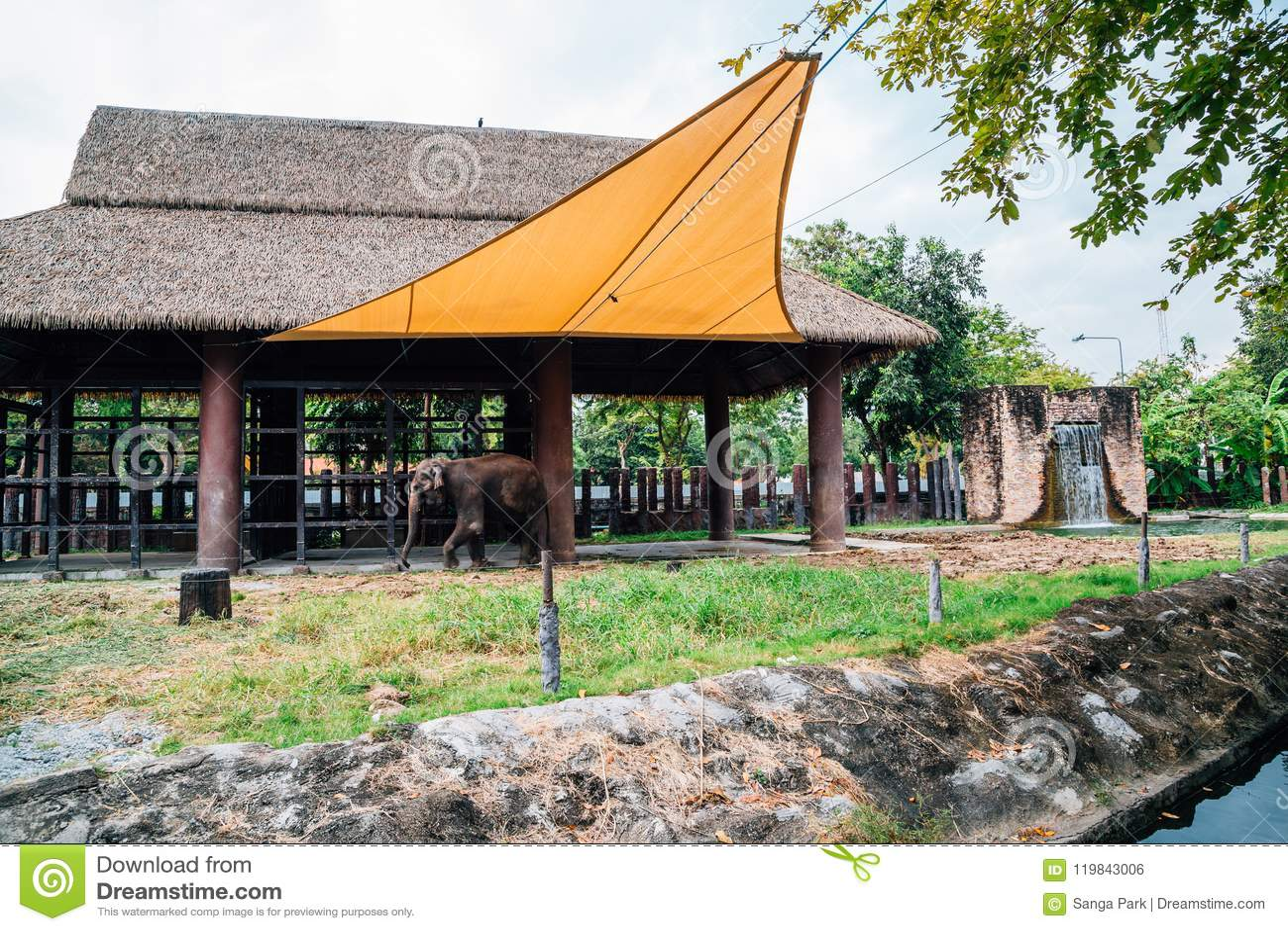 Dusit zoo w Bangkok, Tajlandia