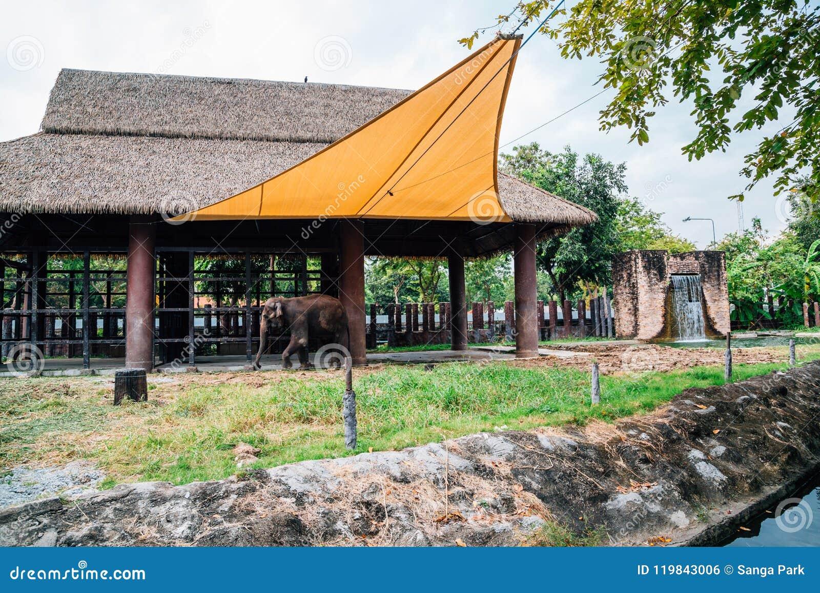 Dusitdierentuin in Bangkok, Thailand