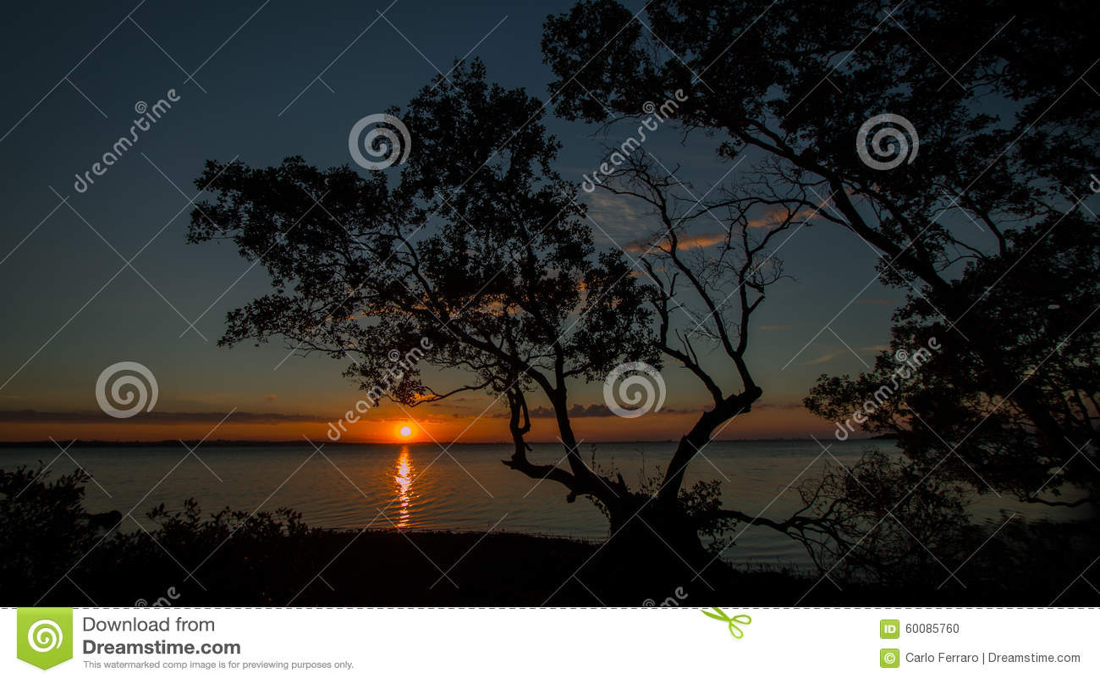 Dusk Sunset