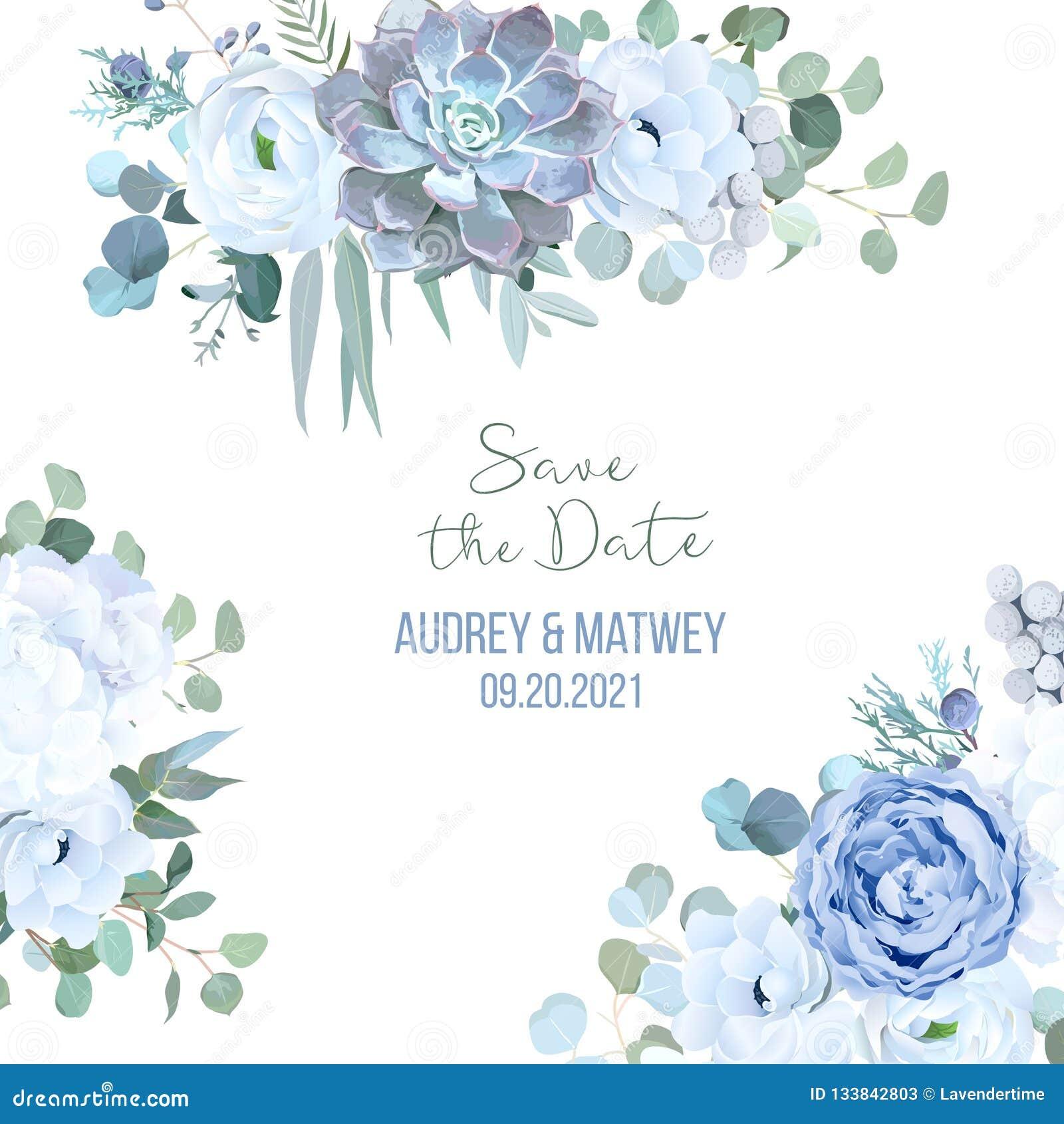 Dusty Blue Rose Echeveria Succulent White Hydrangea