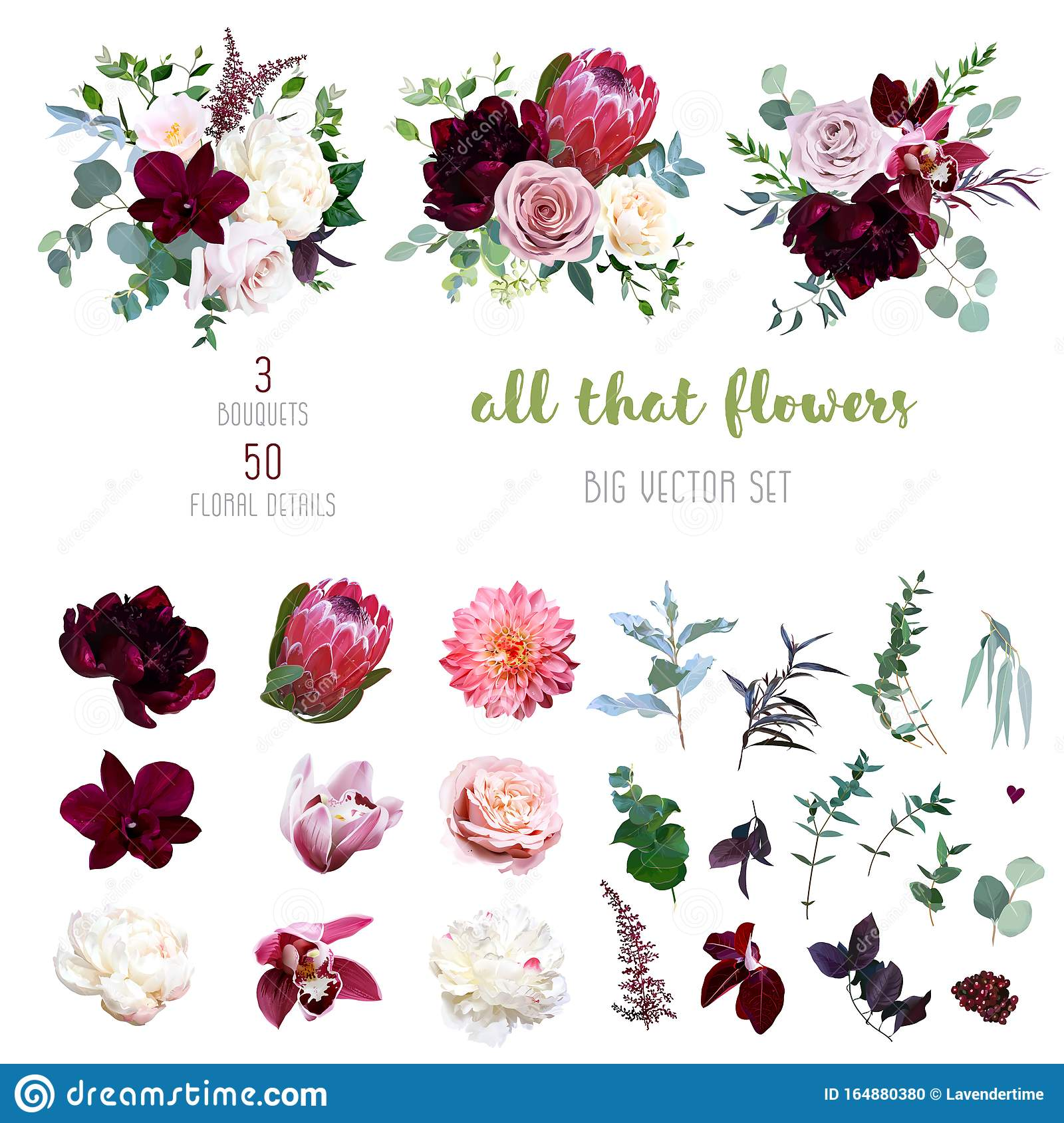 Dusty Pink And Creamy Rose Coral Dahlia Burgundy And White Peony Flowers Stock Vector Illustration Of Elegant Blue 164880380