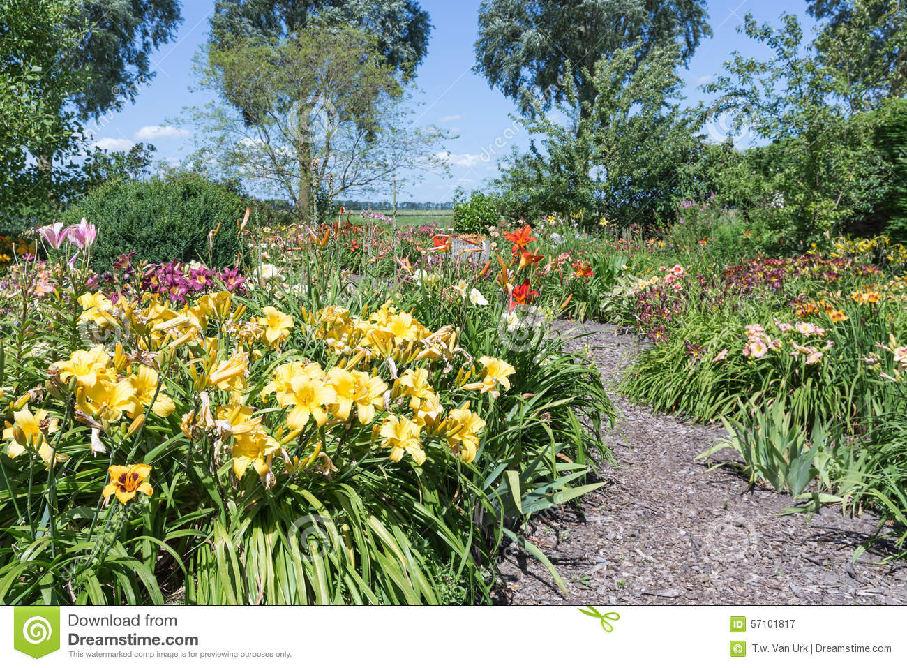 Dutch blooming garden with hiking trails stock photo - Olive garden interview questions ...
